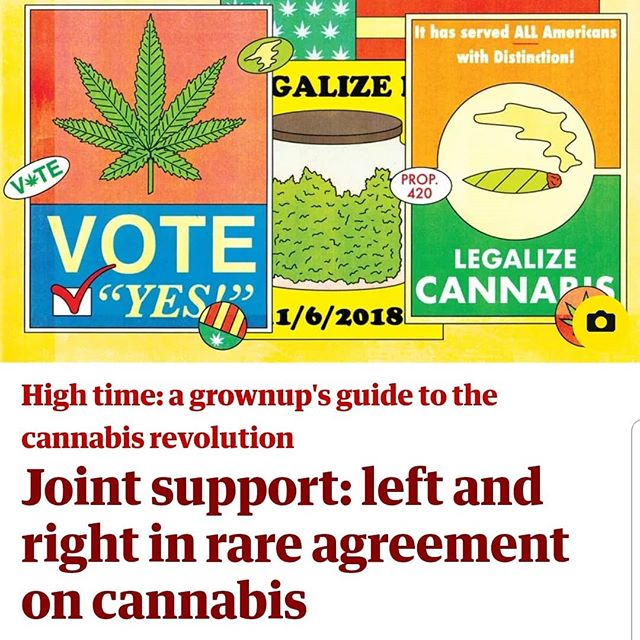 Alex's latest for the @guardian_us with art by @sassybluepanda  #midtermelections #vote #voterregistration #voter #cannabusiness #cannabiz #cannabis #420 #420girls #letssmoke #letsvote