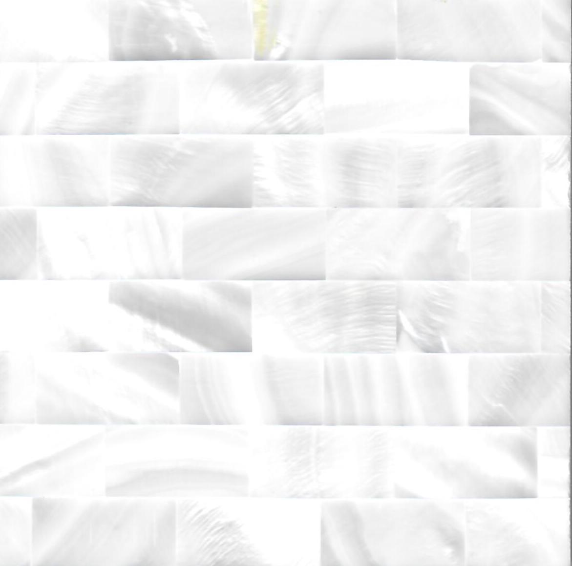 Rectangle White River Shell Mosaic Panel