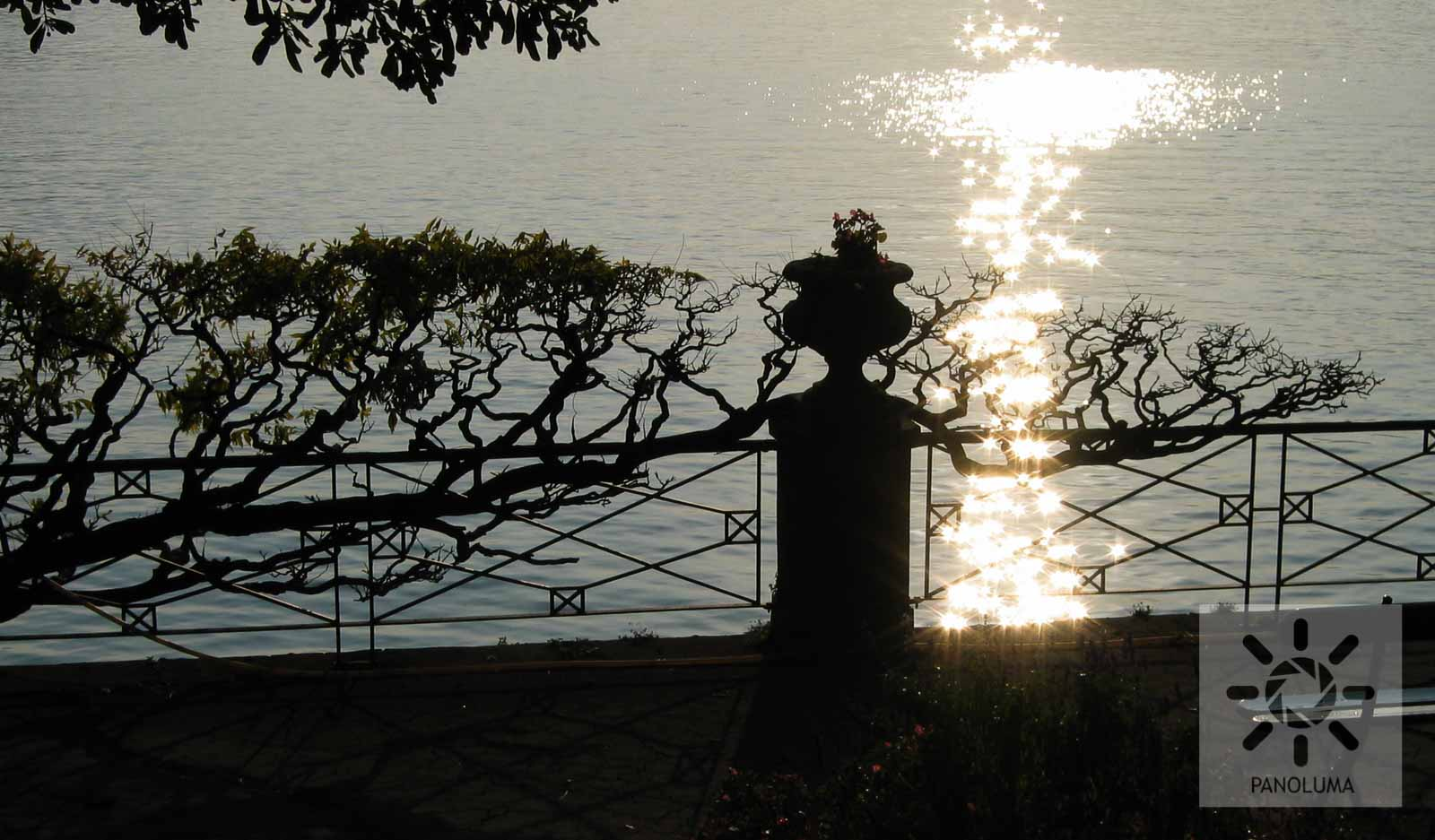 Waterfront Sparkles