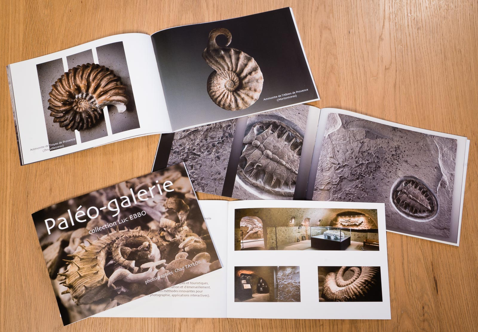 Recent project of photography and graphic design of souvenir booklet for Paléo-galerie, Salignac, France