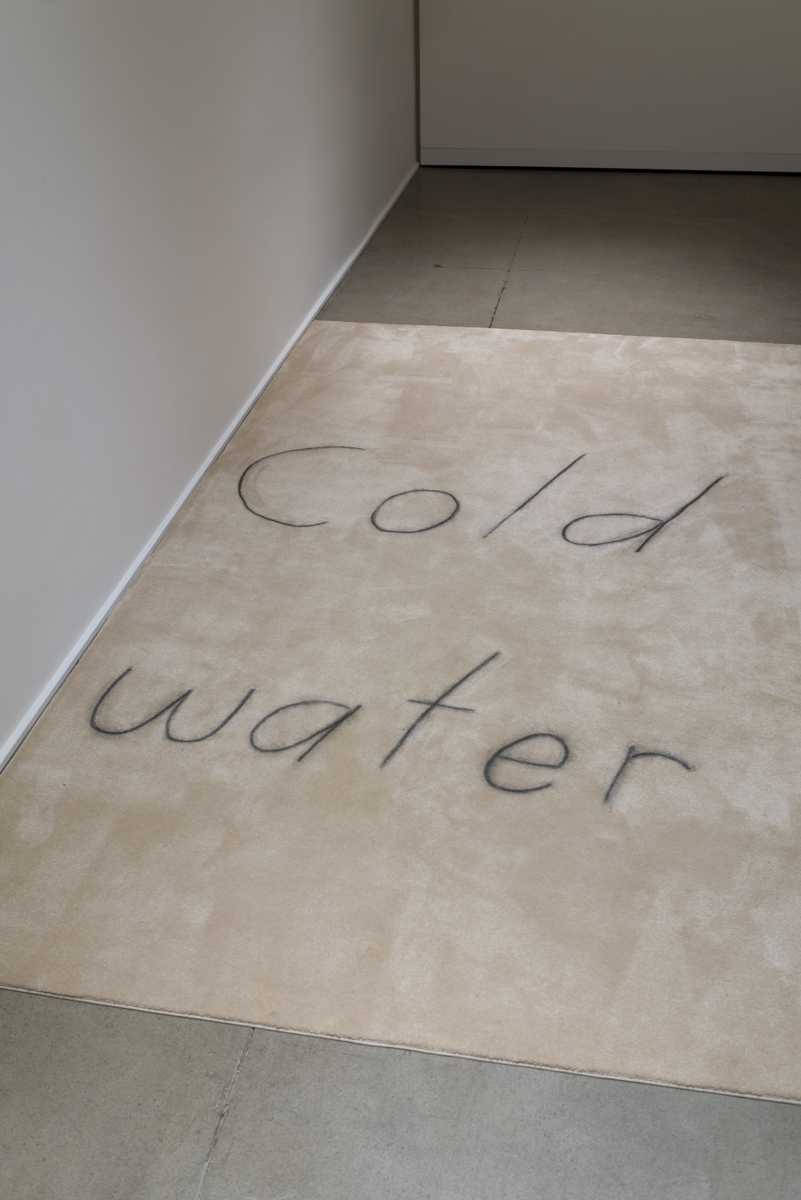 Cold water (detail), 2019 Carpet, chalk 136 x 83 inches