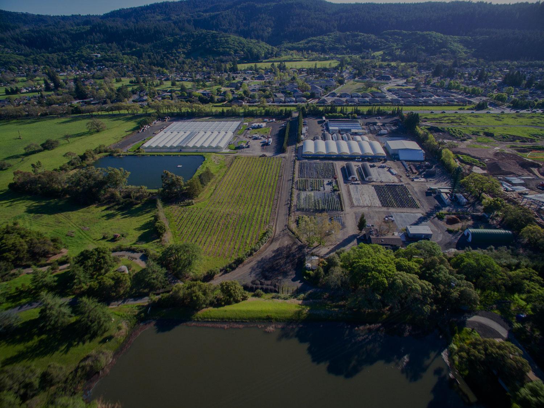 aerialphoto1.jpg