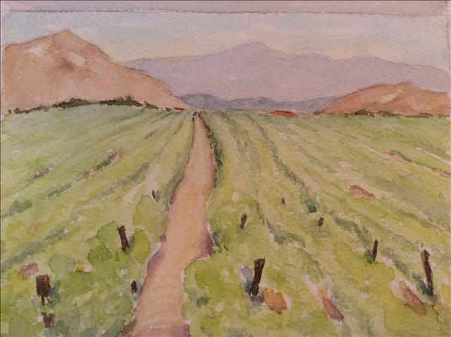 Temecula Vineyard   Watercolor, June 2015