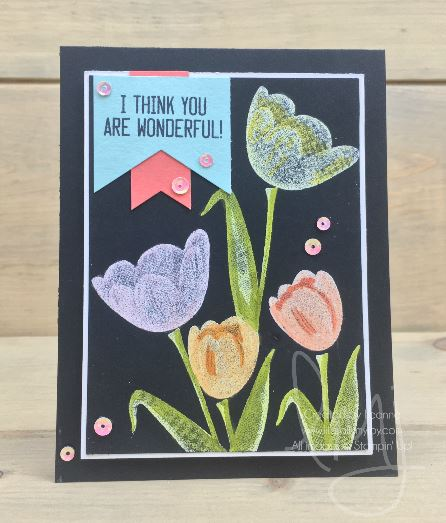 Wonderful Tulips.JPG