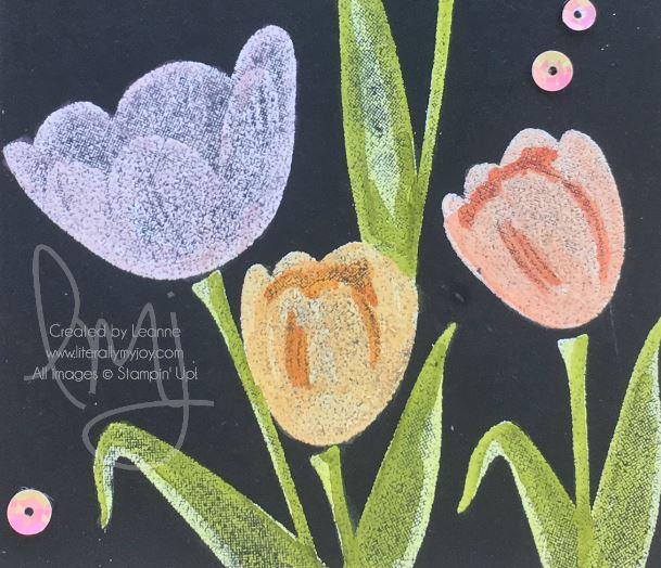 Tulips Blends.JPG