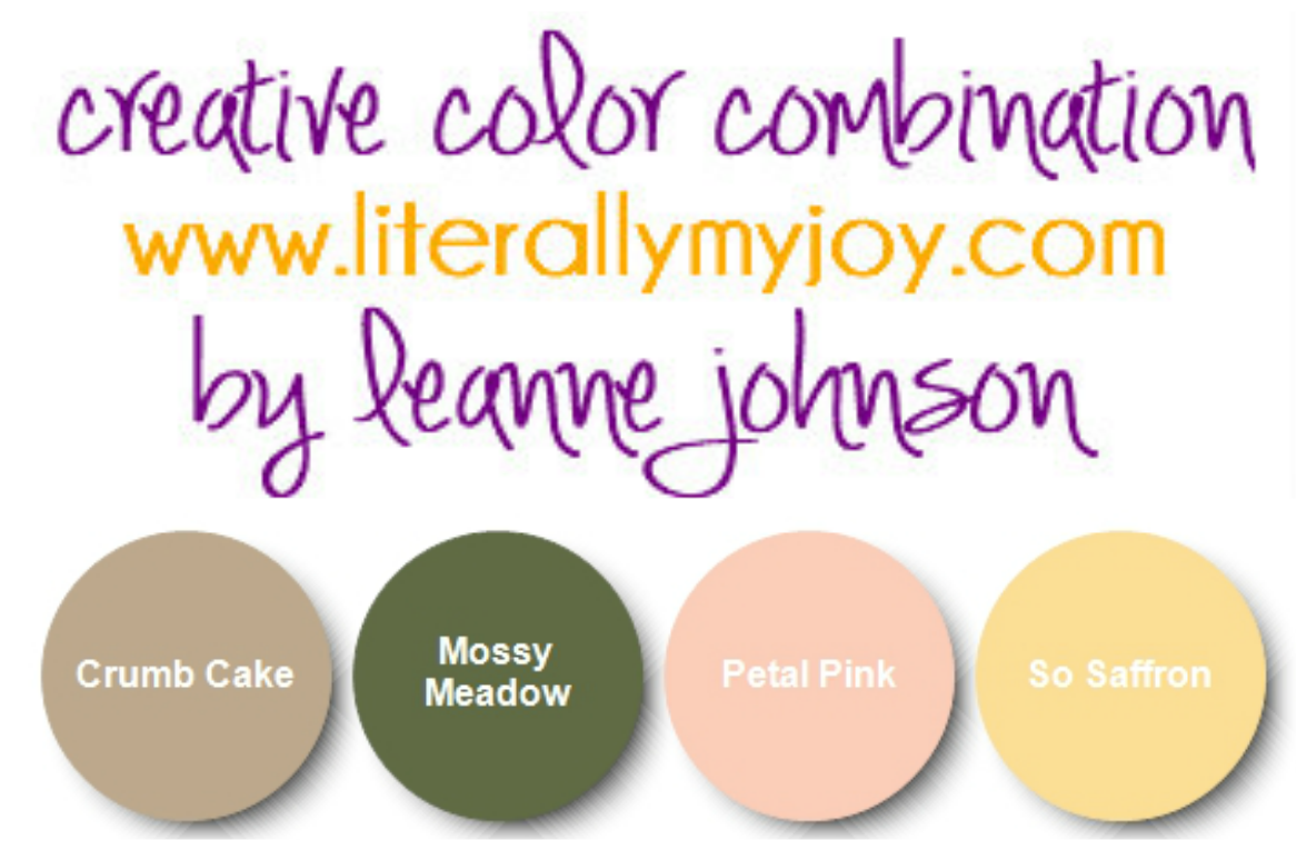 Journey of Life Color Combination.png