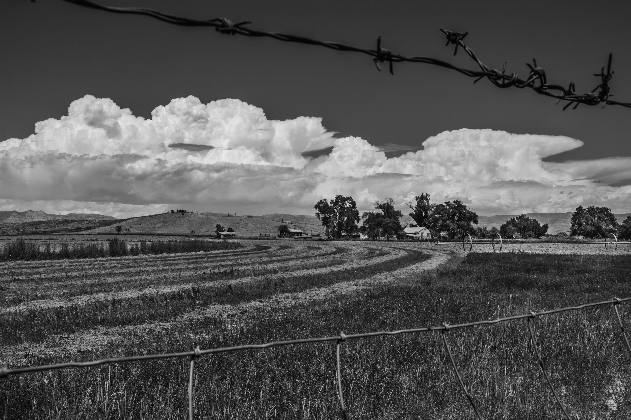 Day 8 - Farm, Wellington, UT copy B&W.jpg