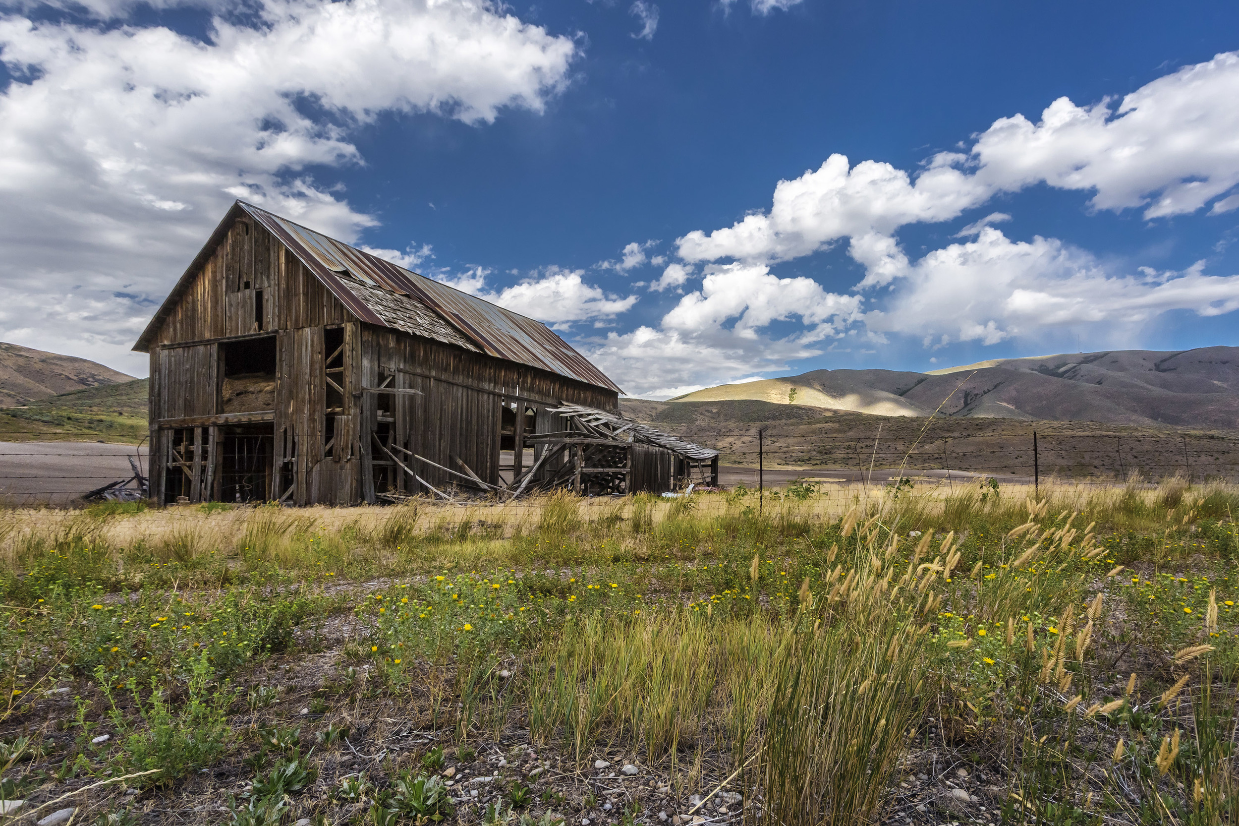 Day 9 - BARN, Chokecherry Cyn, UT (3).jpg