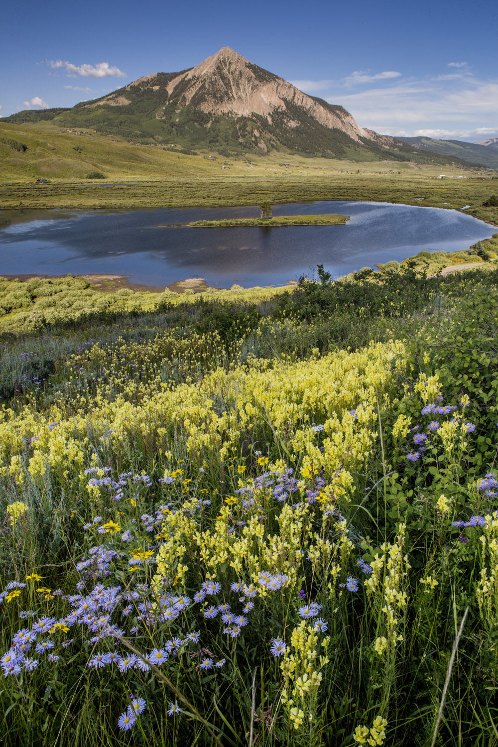 Day 2 - Crested Butte & Wildflowers (1).jpg