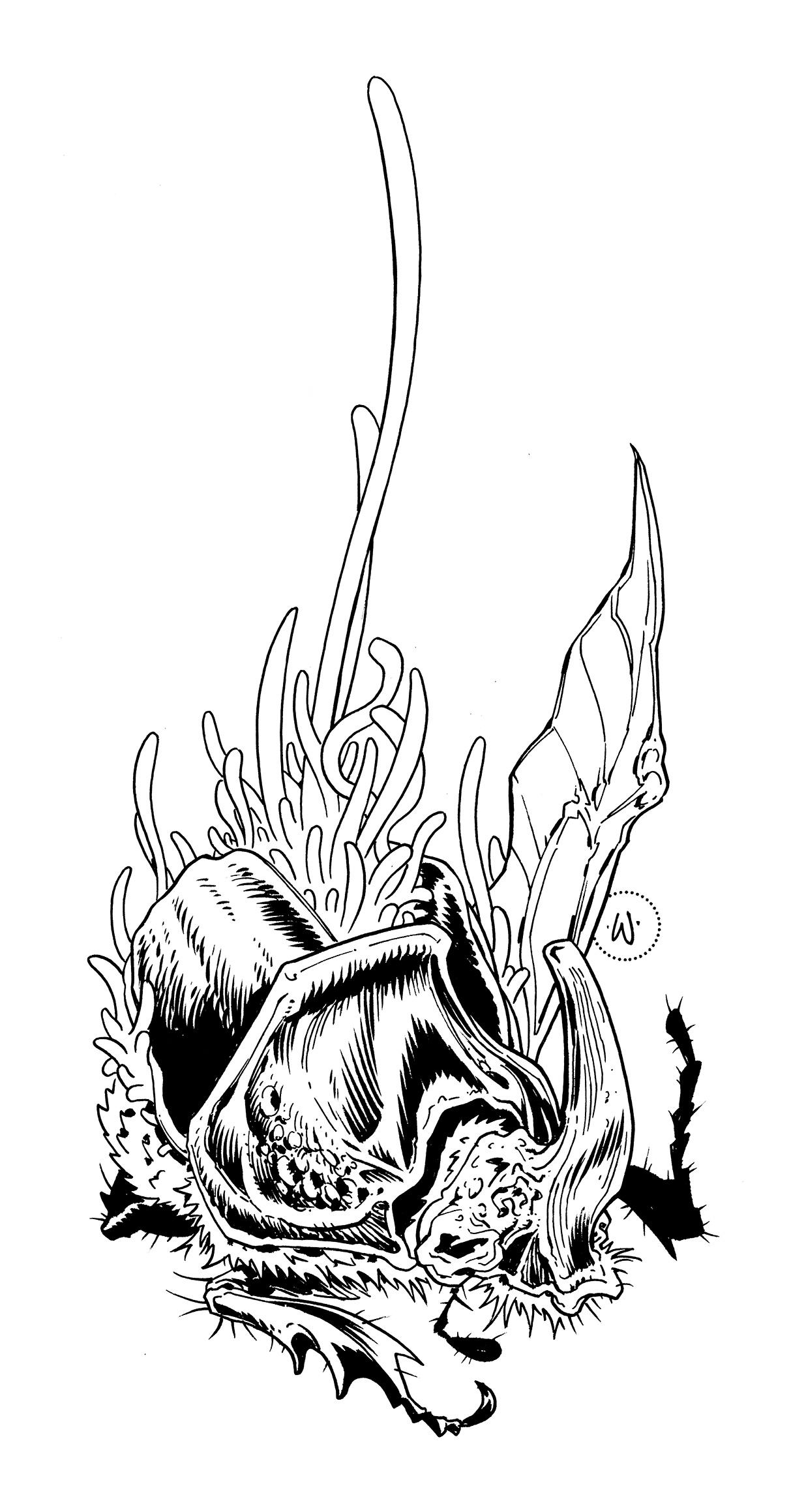 Rhino_Beetle_Inks.jpg