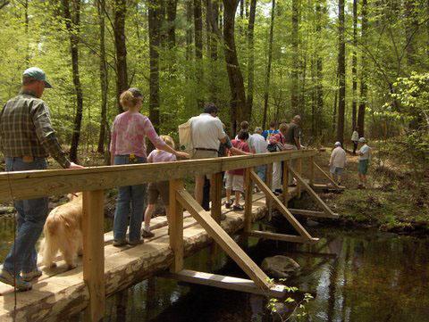 Riddle Brook foot bridge