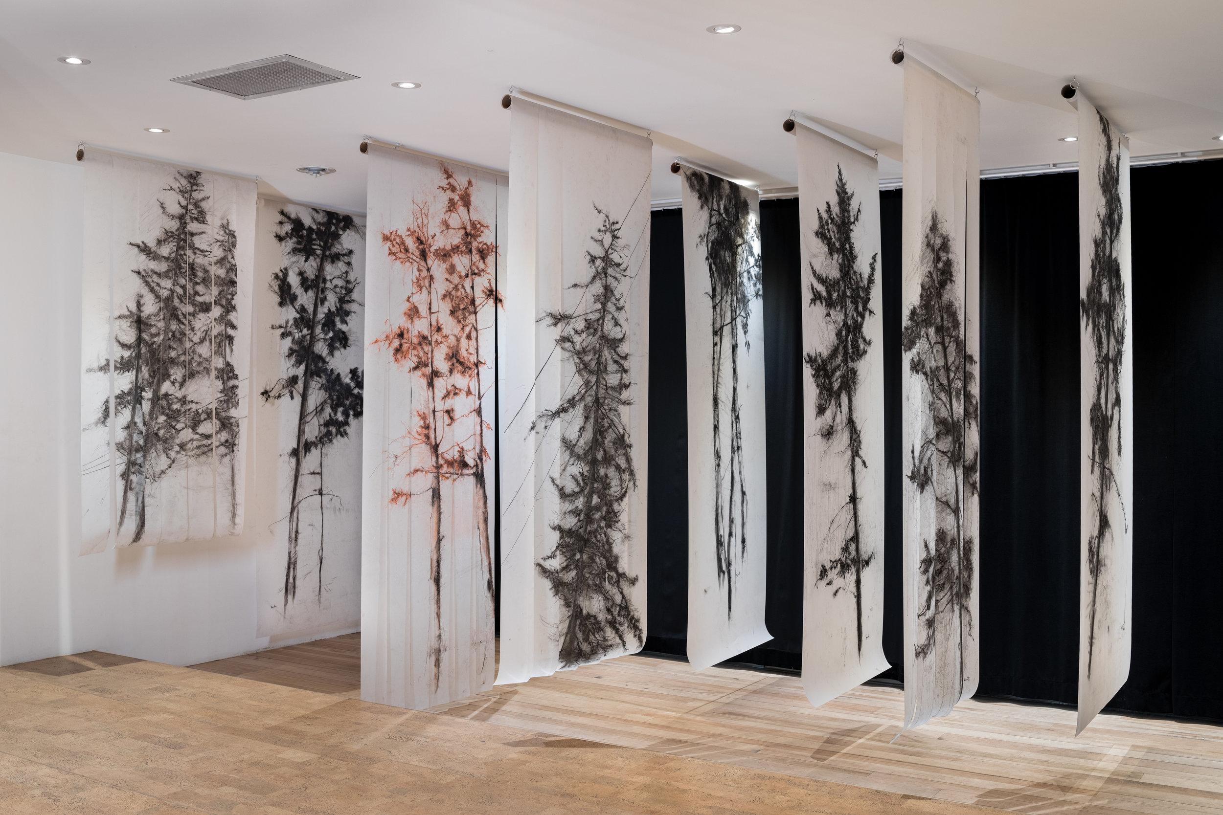 Understory  installation at The Forum, Kelowna/ photo credit: Yuri Akuney