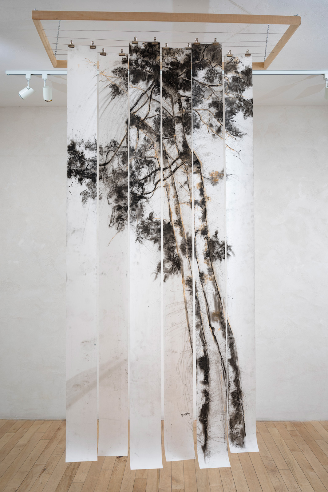 """BIRCH ,  wood, wire ,  charcoal on drafting film, 24""""d x 42""""w x 96""""h"""