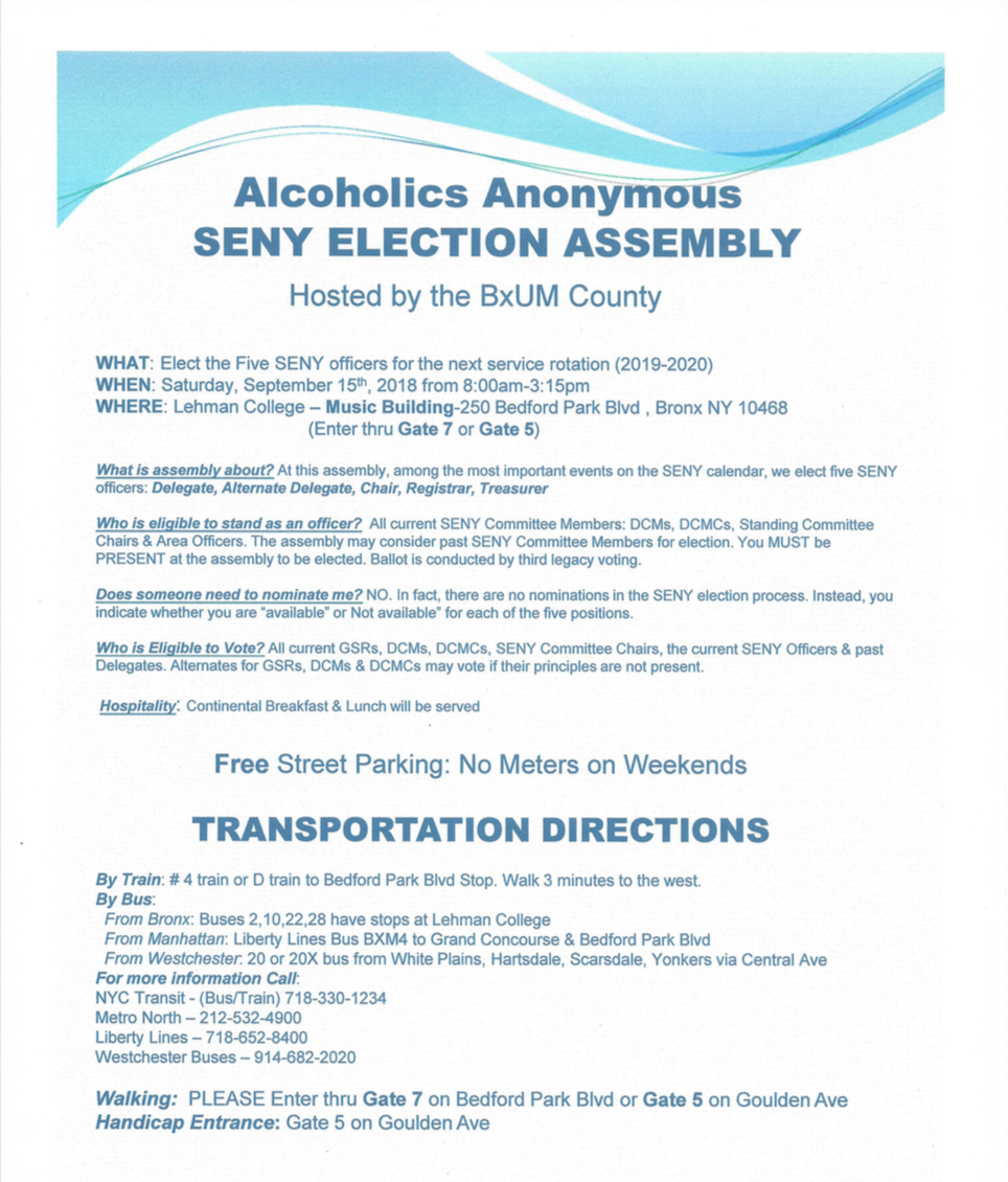 seny election 1.png