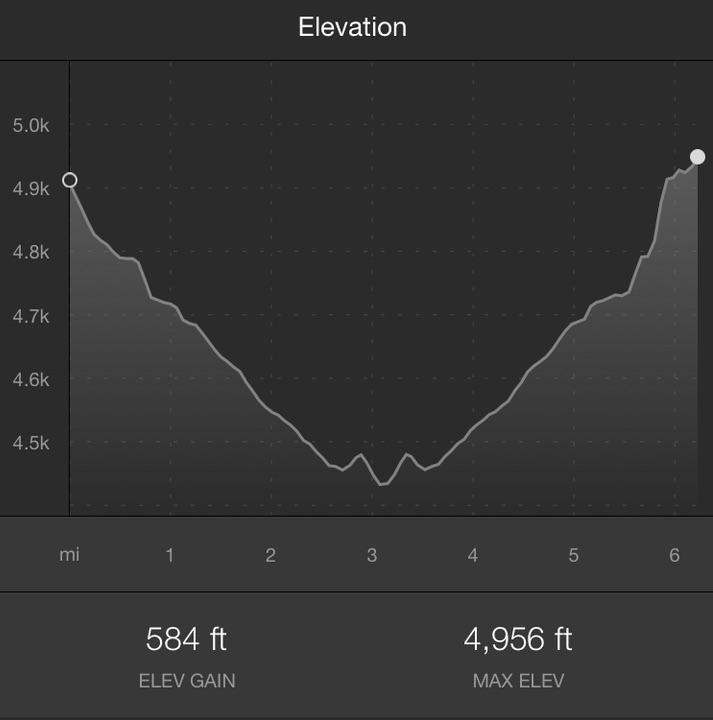 Elevation Strava.jpg