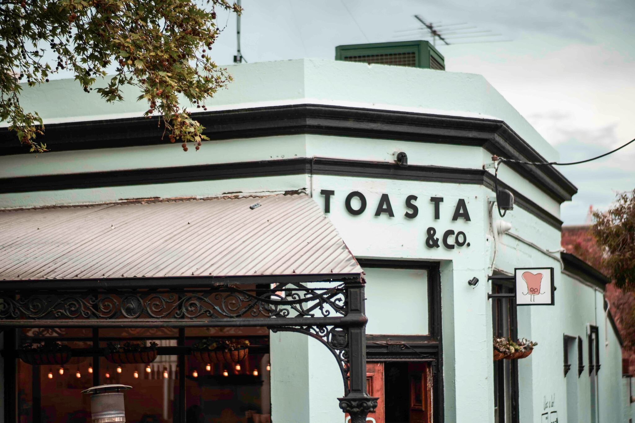 20171011_Toasta (6 of 45)_preview.jpg