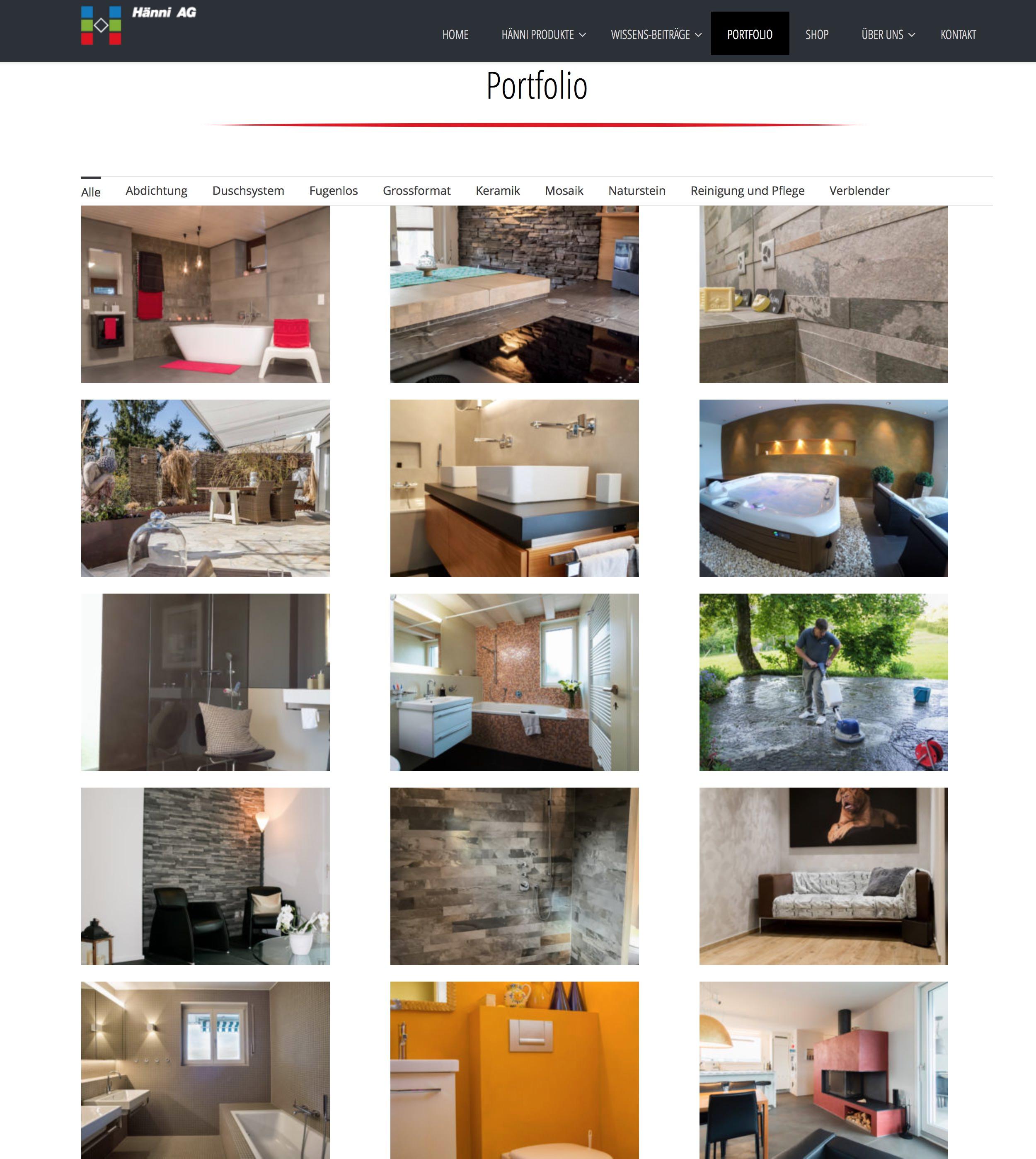 portfolio-haenni ag-partners in gmbh-2.jpg