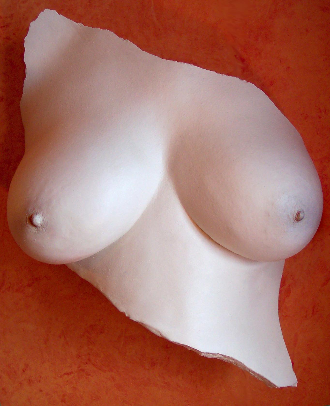 plain breasts 2 copy.jpg