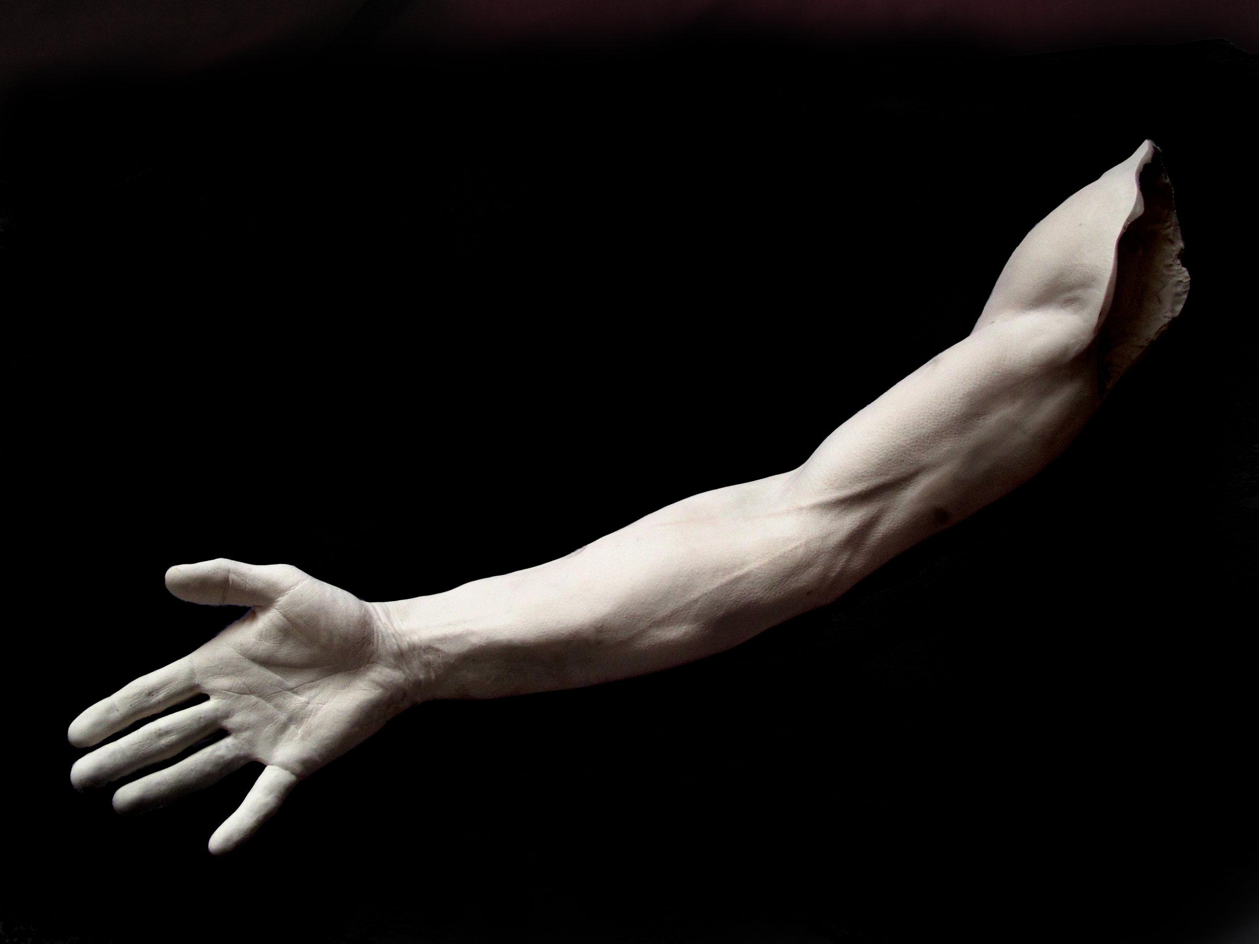 male arm a.jpg