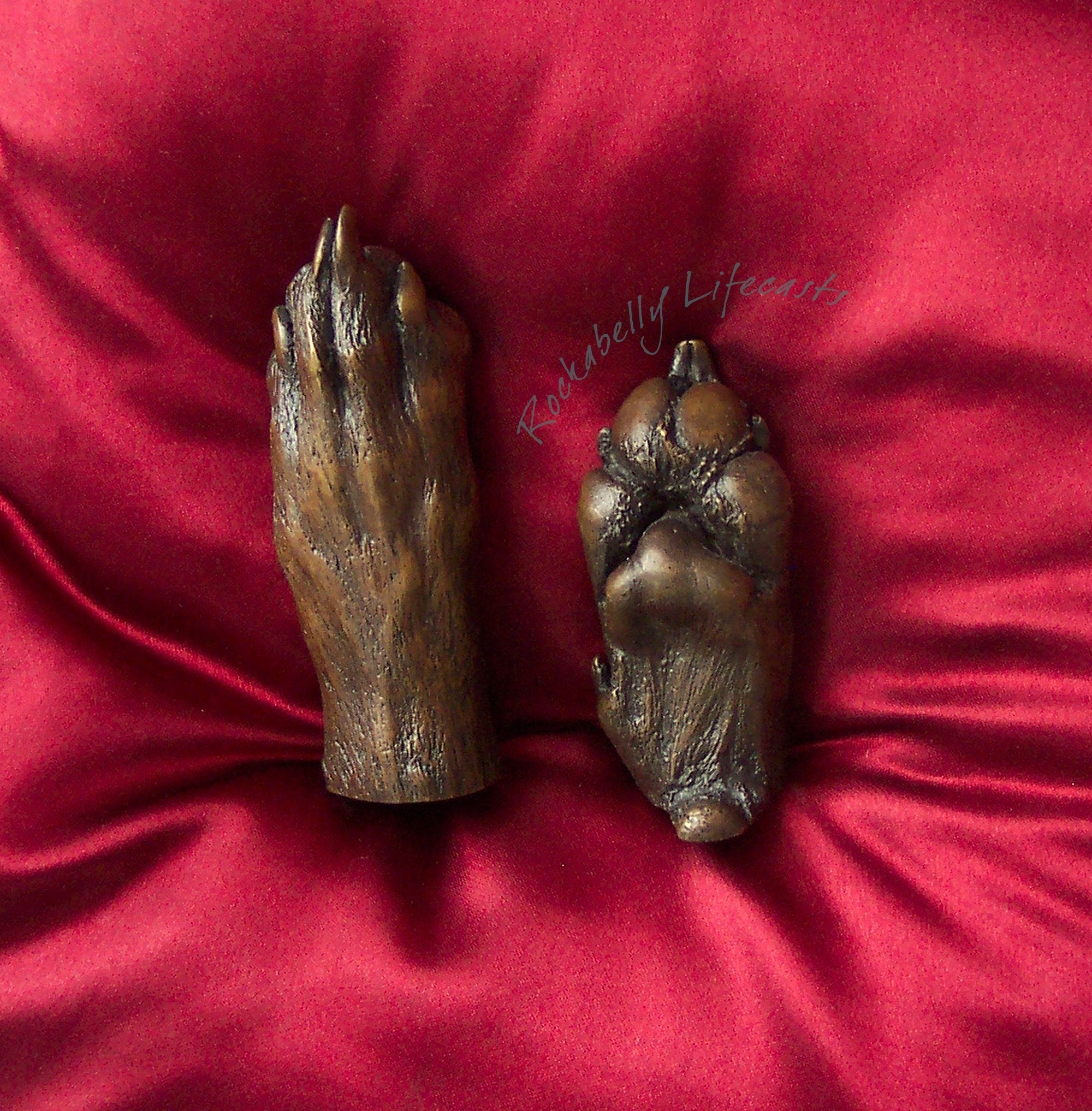 Bronze dog paw casts by Rockabelly Lifecasts