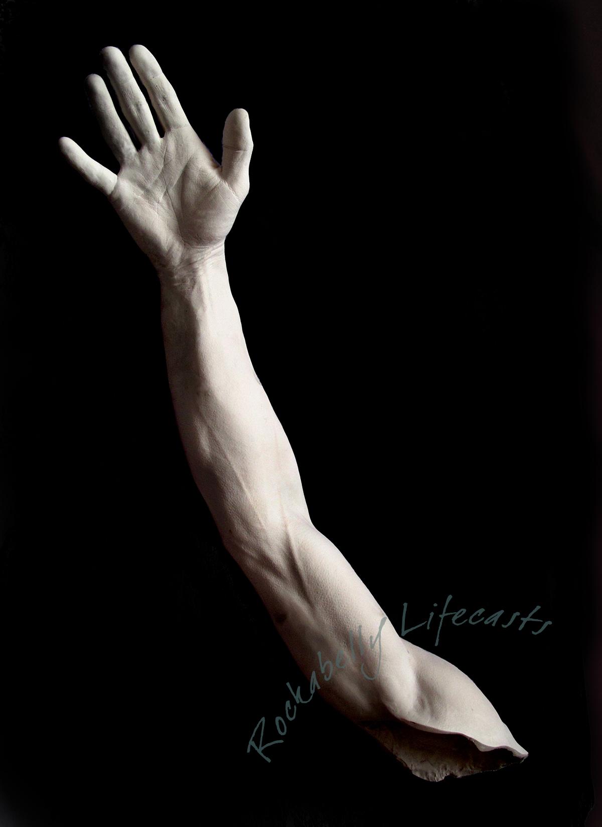 ADULT HANDS/FEET