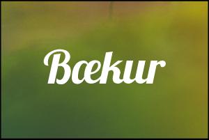 baekur_smamyndir-01.png