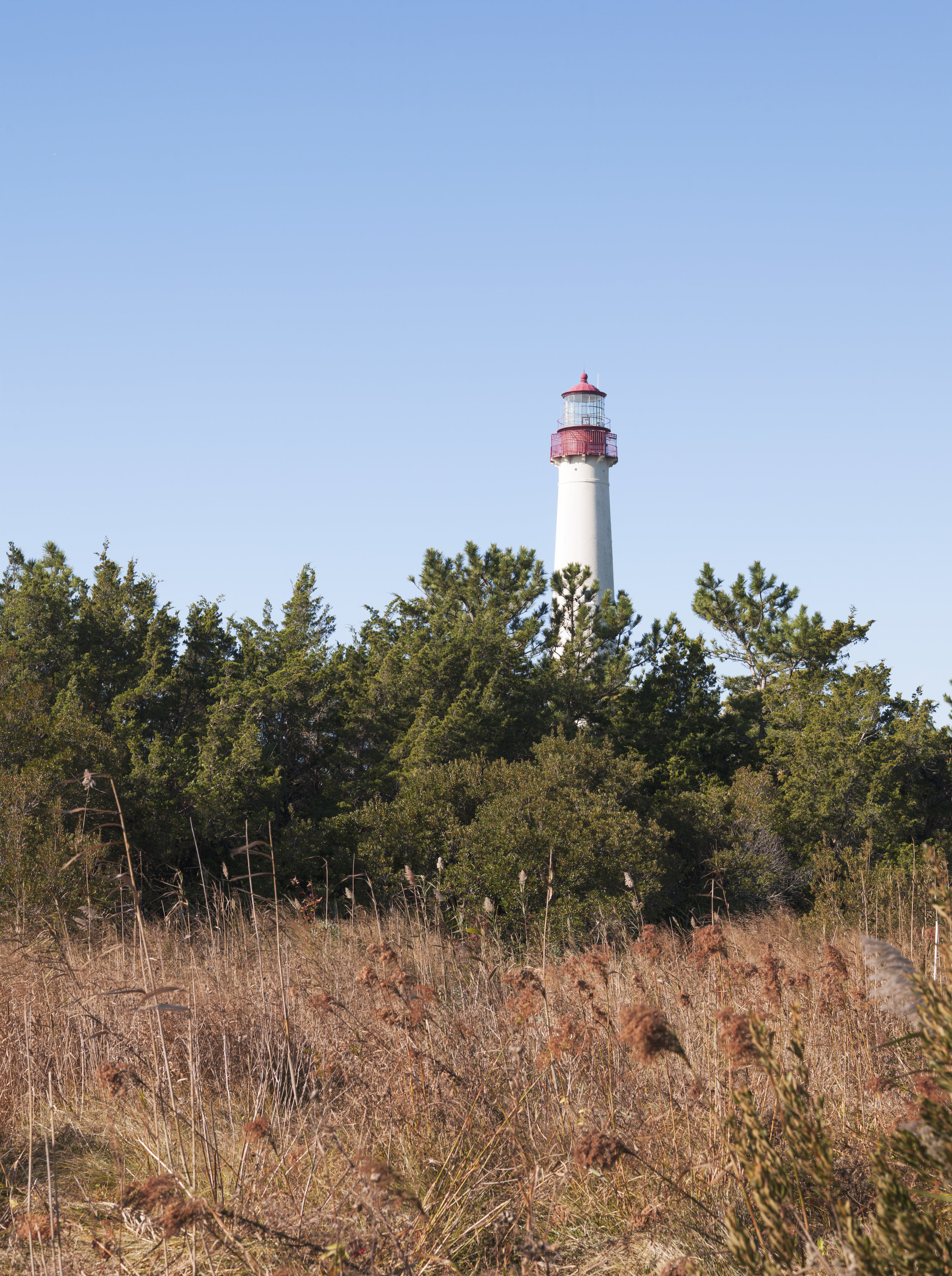 Cape May-402.jpg
