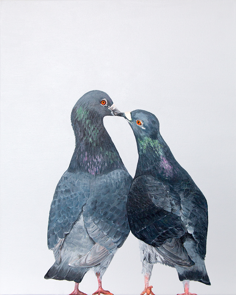 7 IMG_3700_pigeons.jpg