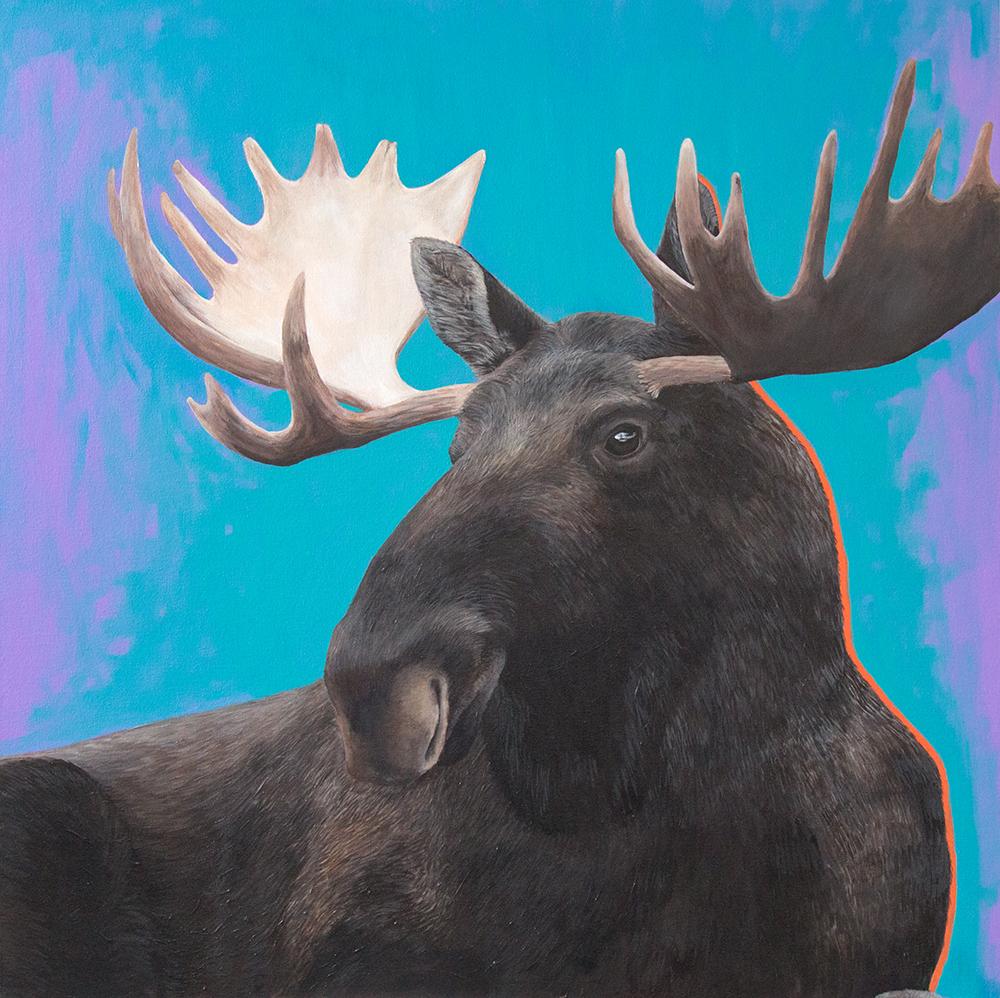 10 IMG_3566_moose.jpg