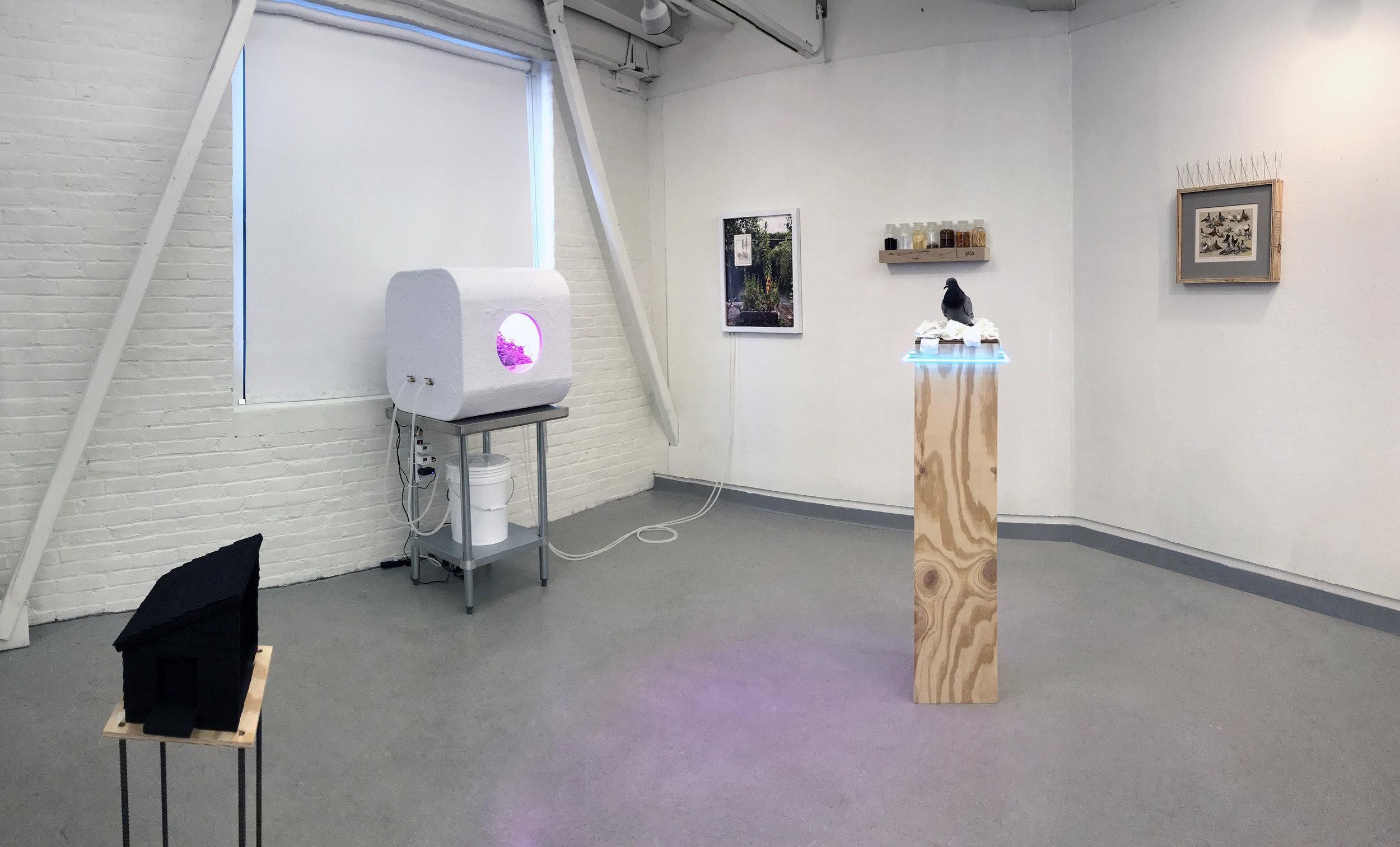 Installation View at NHIA