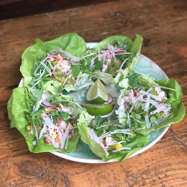 Shrimp lettuce wraps, as fresh as it gets 🍤 !