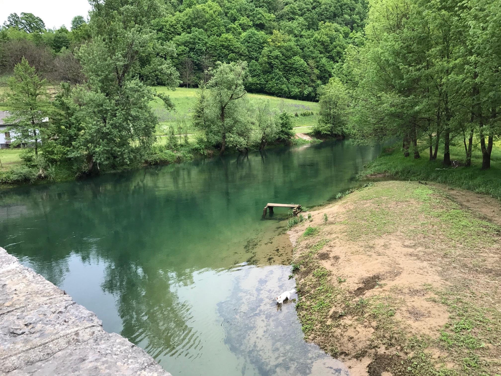 The Dobra River near Sara's family's home.