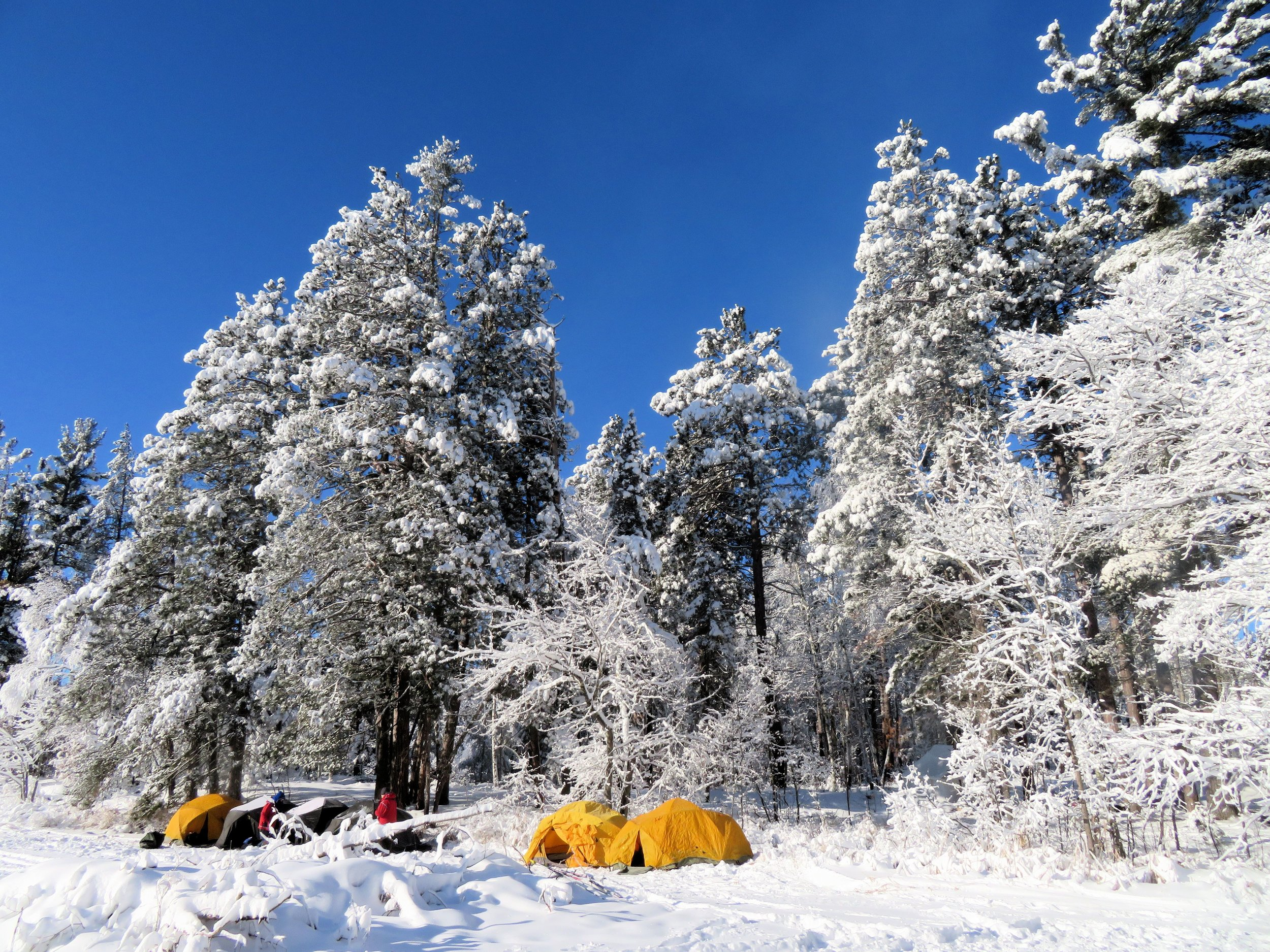 Houghton winter camp.