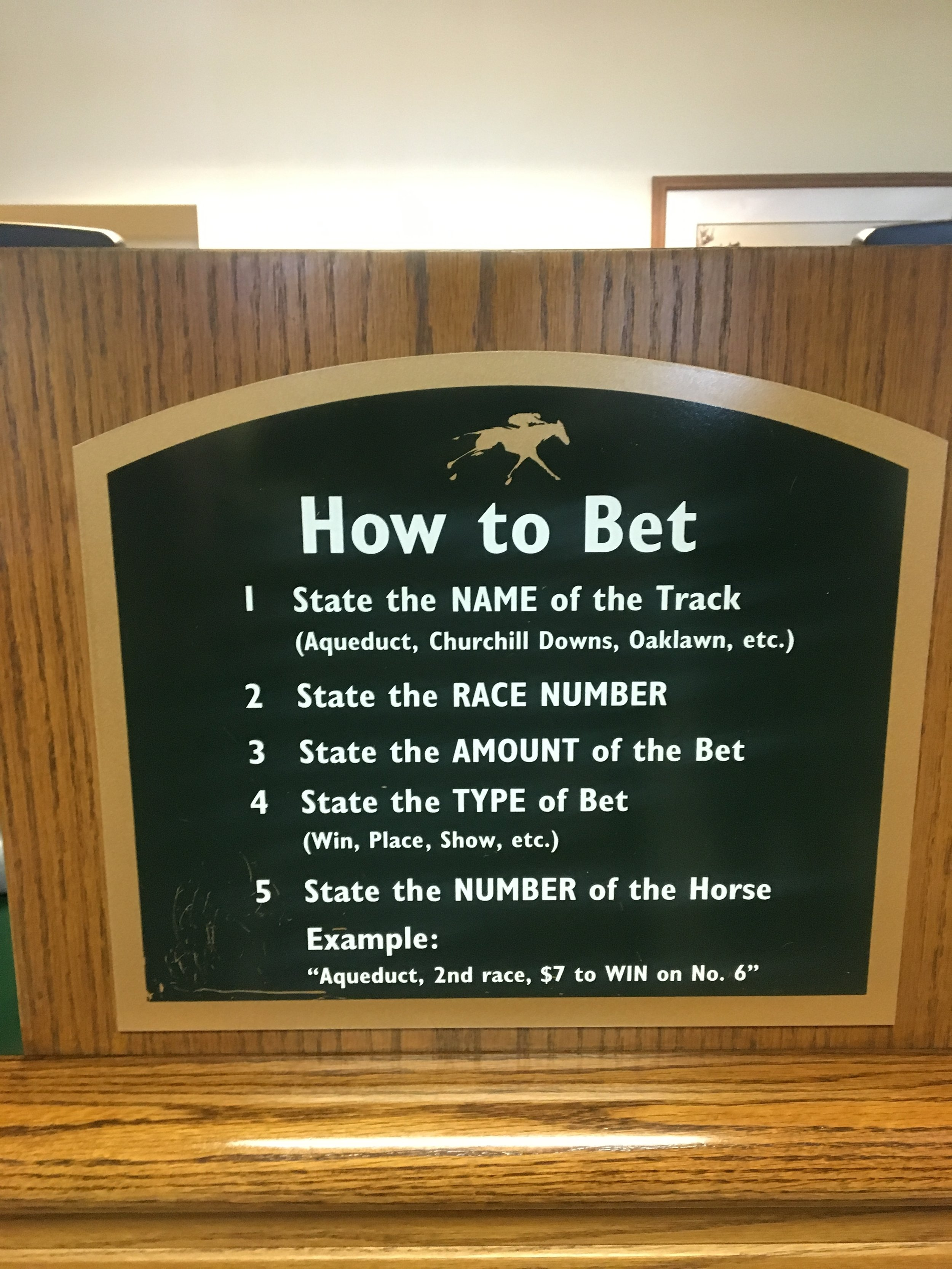 Horse betting!!! There is a whole lot of thought that can go into this like stats, breed etc... If your drunk with $2 like me you just pick which horse has the funniest name.