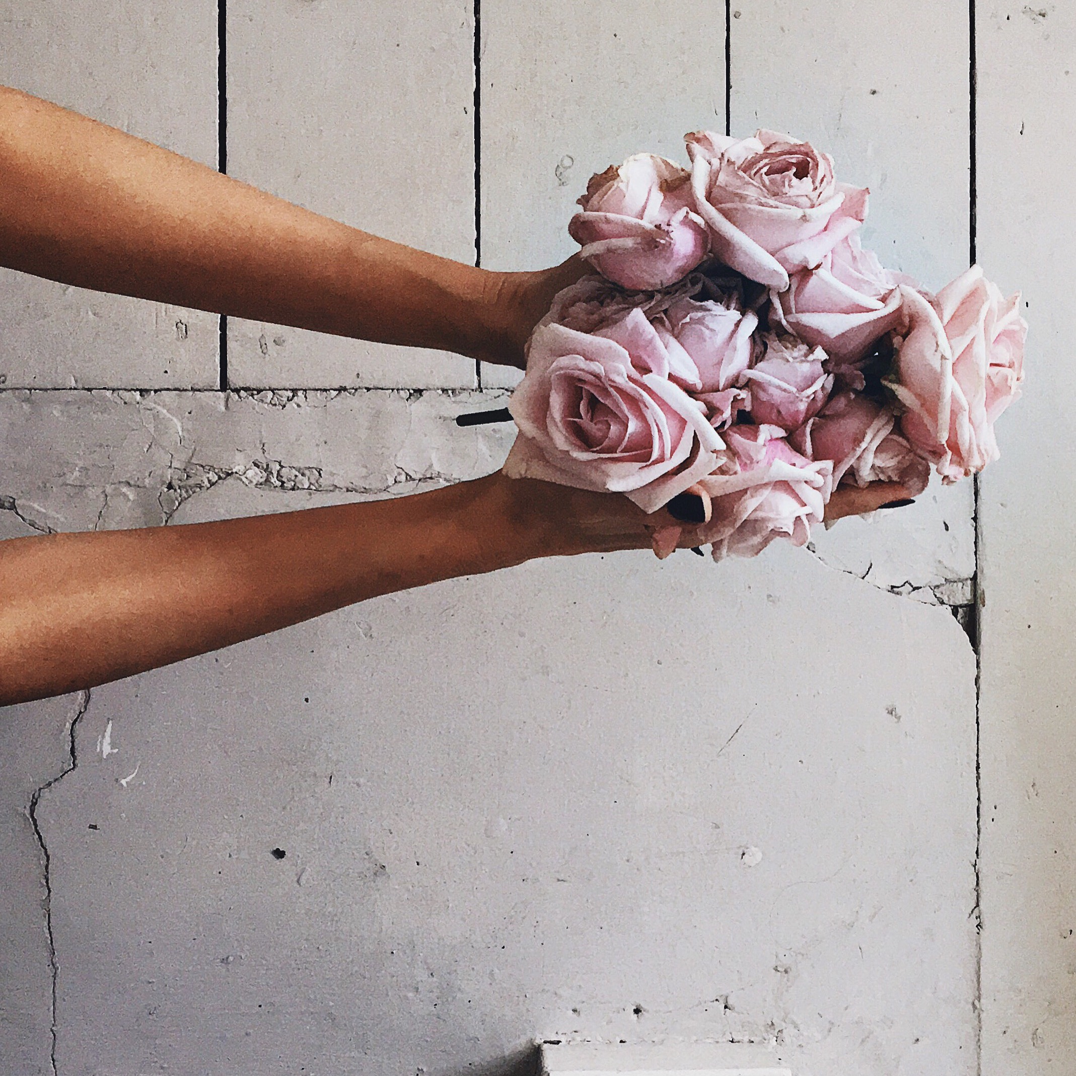 Paint & Haven - a handful of roses, beauty in my hands. Click through to read the blog