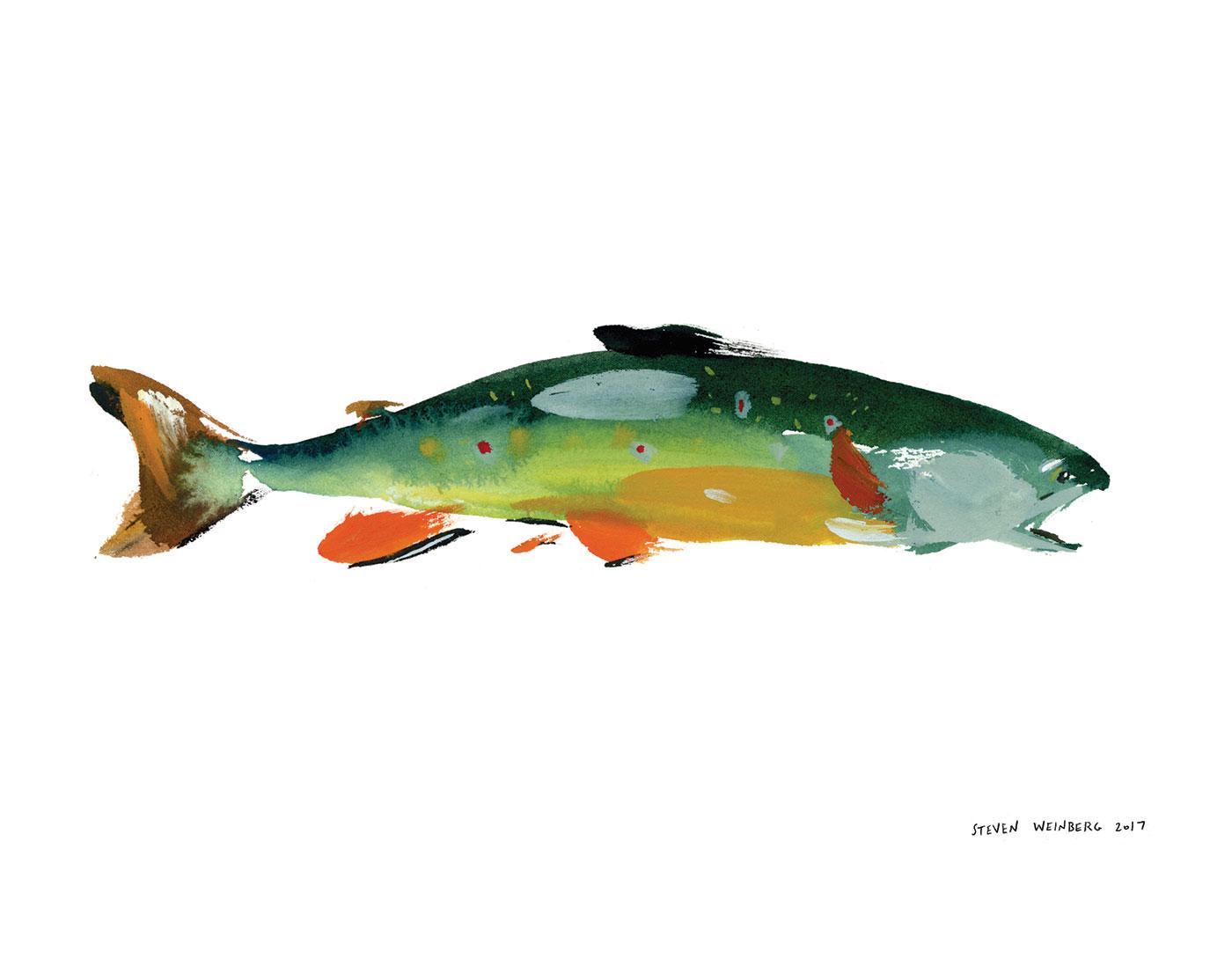 fall-fish-orange.jpg