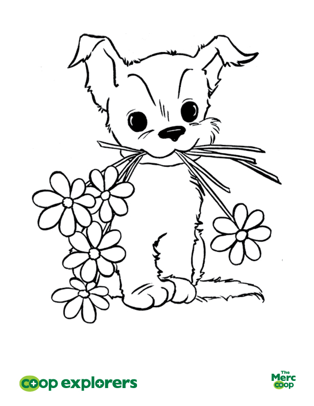 ColoringSheet_MayFlowers2.jpg