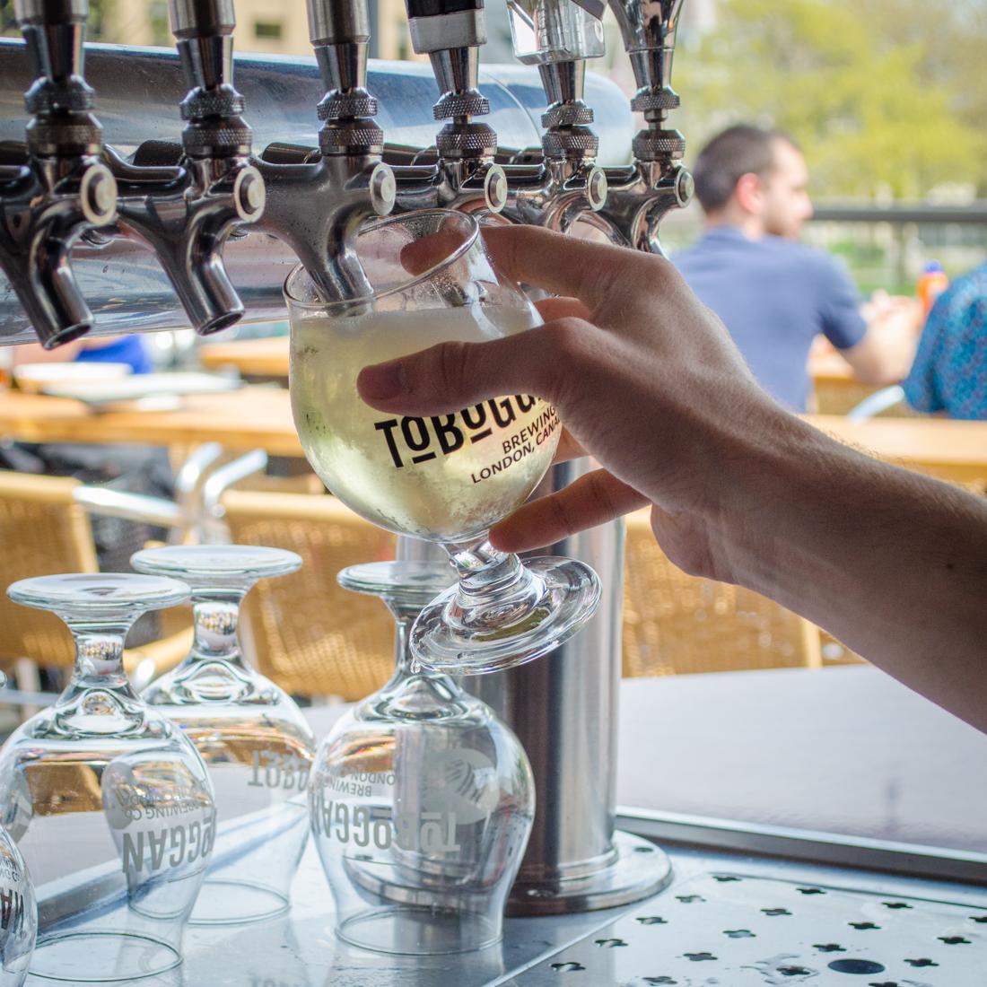 Toboggan Brewing Co. Cider