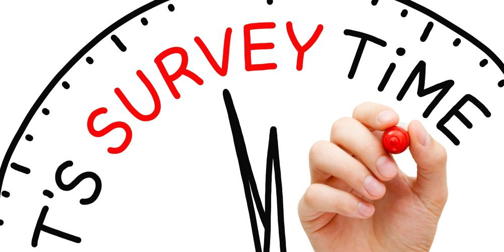 survey-1.jpg