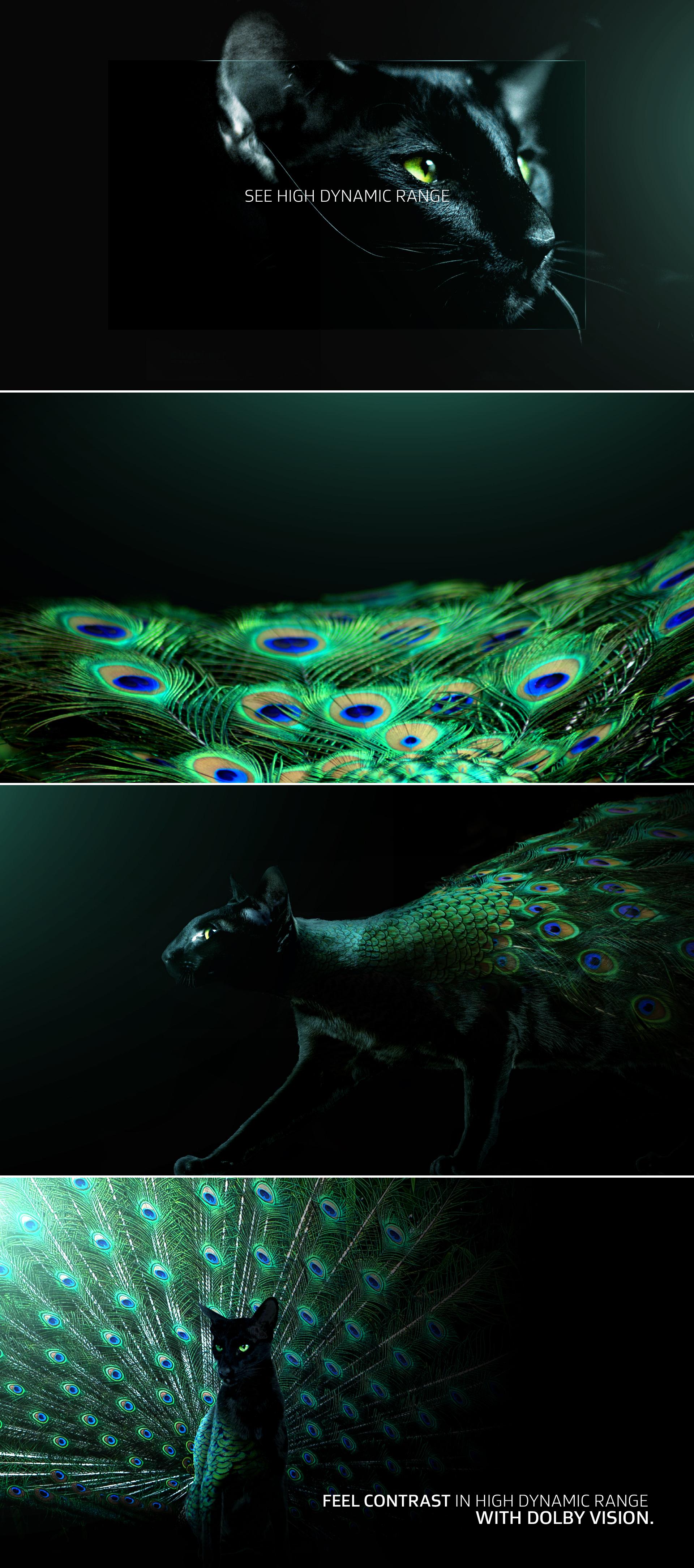 063017_Dolby_LG_PeacockC_S01.jpg