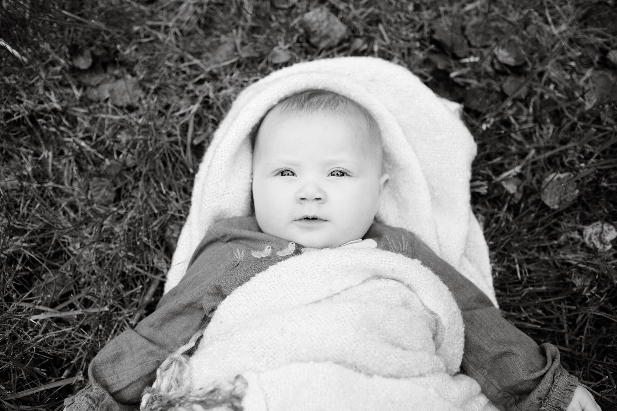maine-baby-milestone-photographer-stepheney-collins-photography -36.jpg