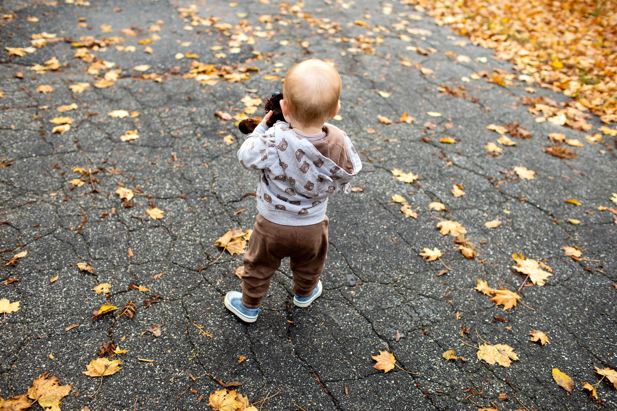 maine-baby-portrait-photographer -11.jpg
