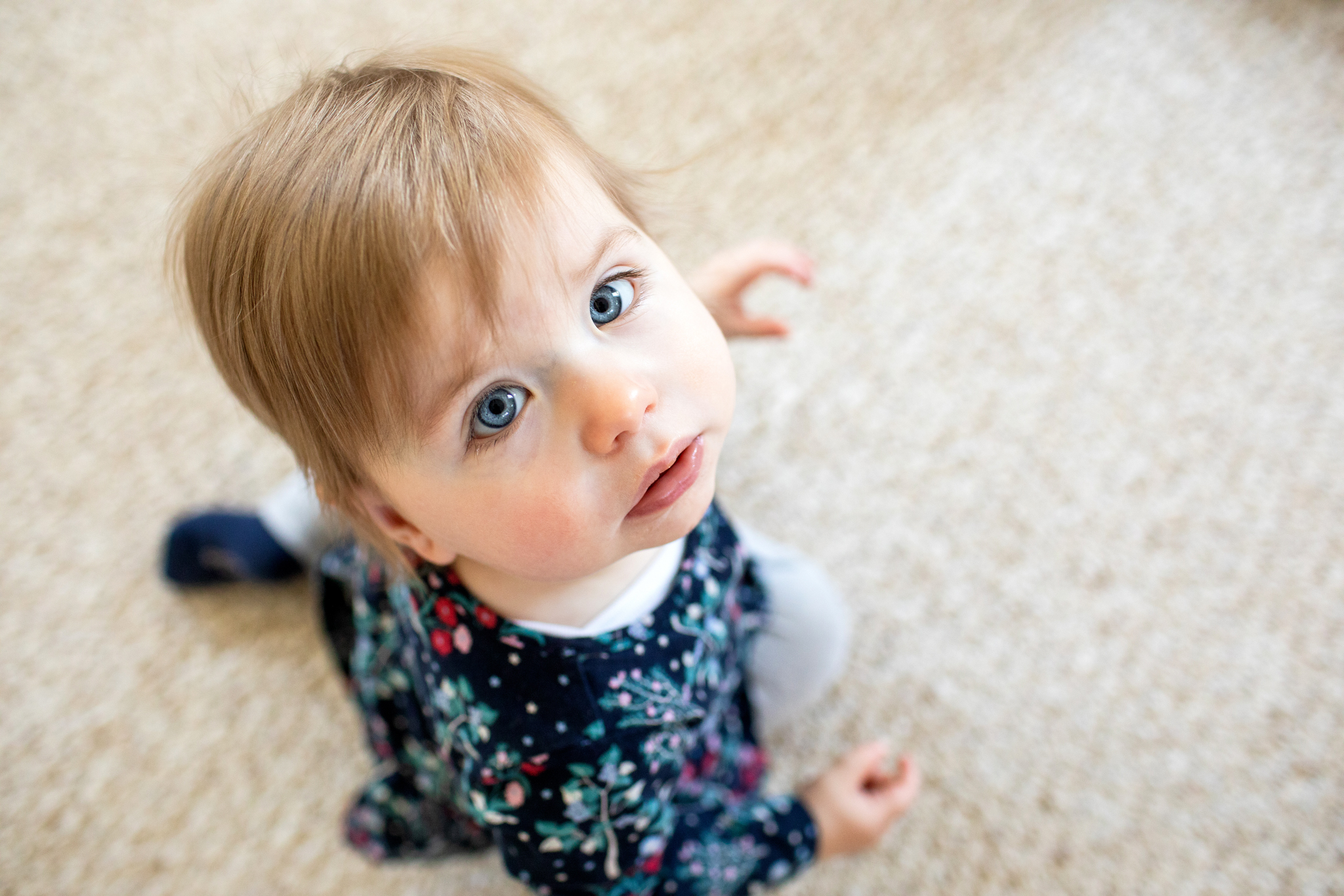 maine-family-photographer-stepheneycollinsphotography -4.jpg