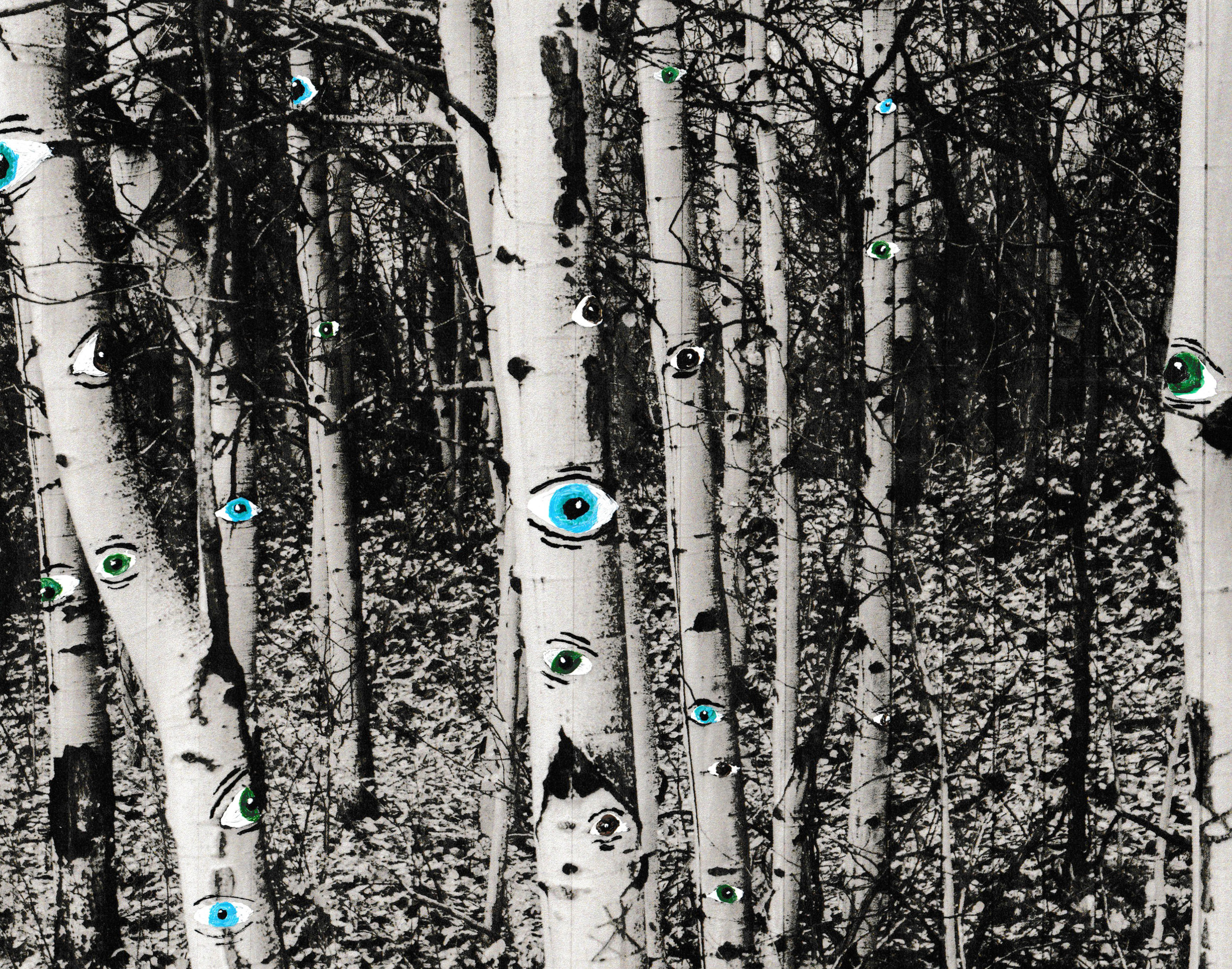 eyes in the trees 1.jpg