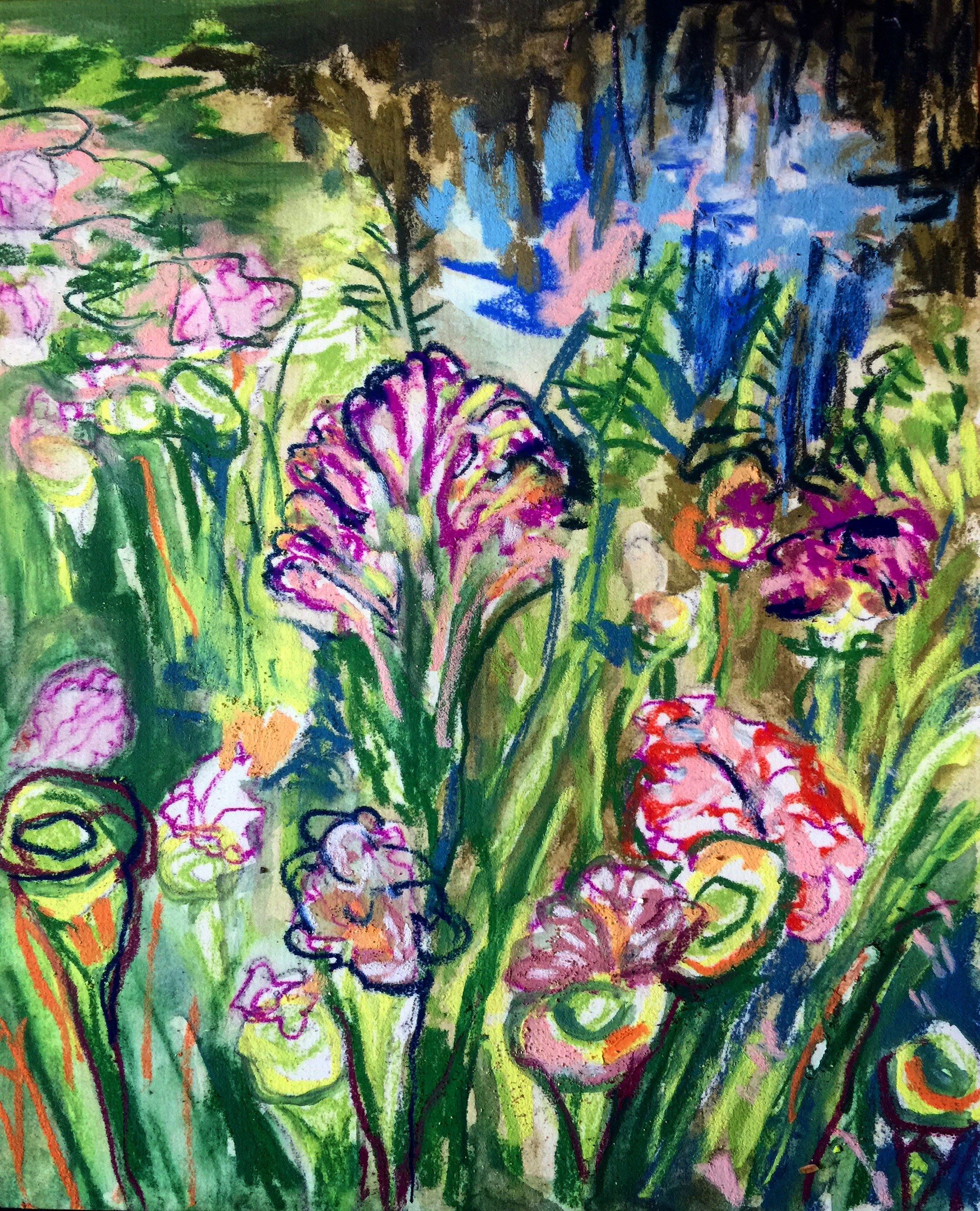 pastel sketch of flowers from a recent trip to Philly to see my cousin. He took me to these gardens with these amazing flowers. I was inspired to sketch them.
