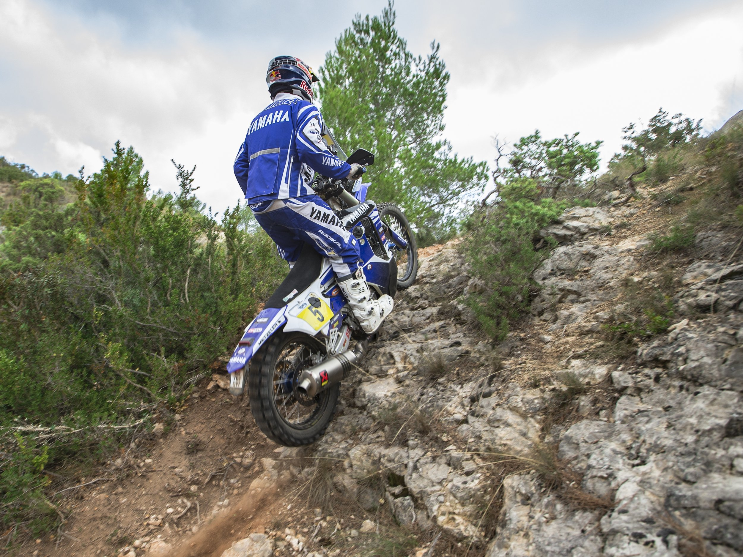 2017_WR450FRALLY_ACT_003.jpg