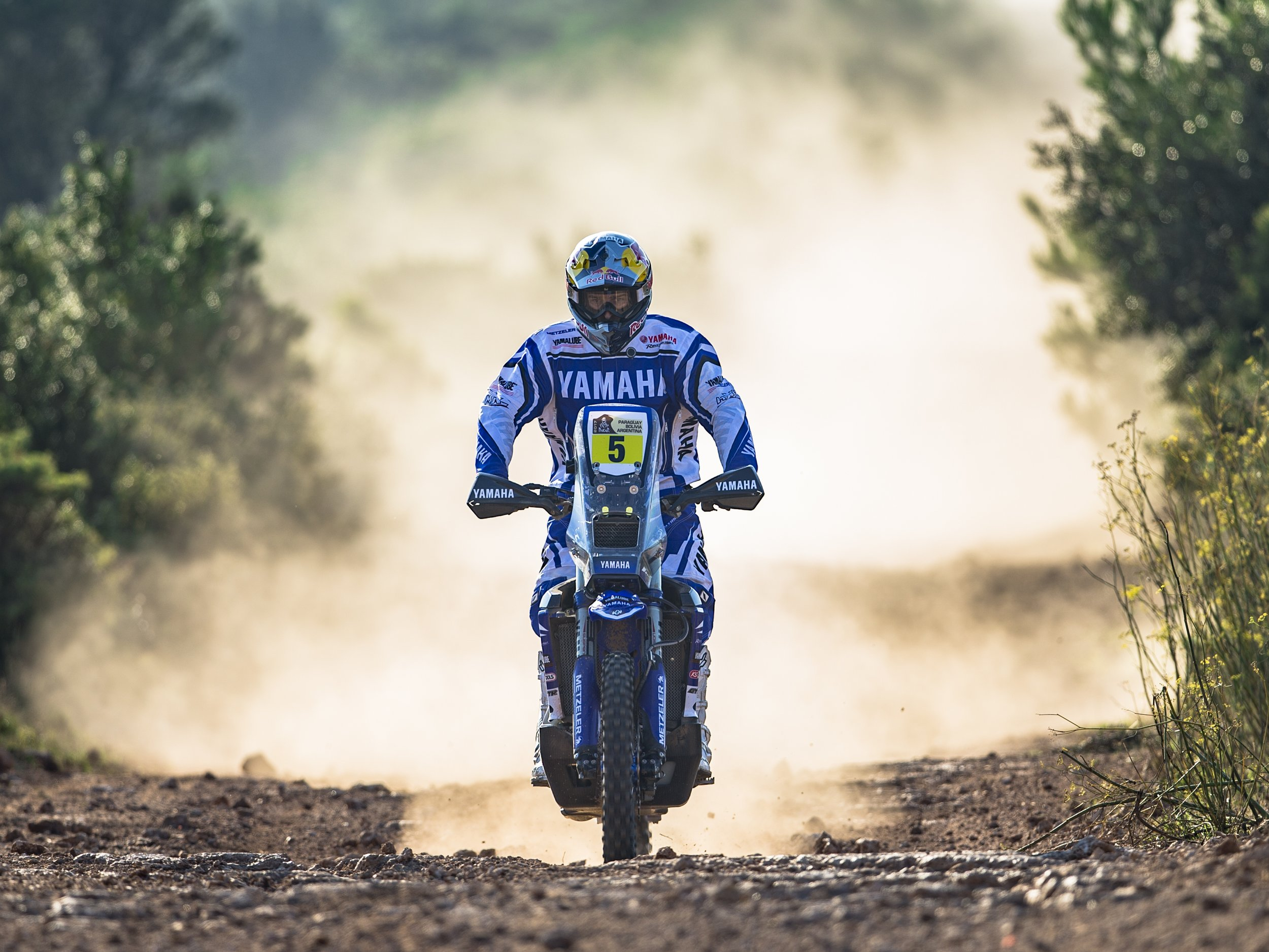 2017_WR450FRALLY_ACT_005.jpg