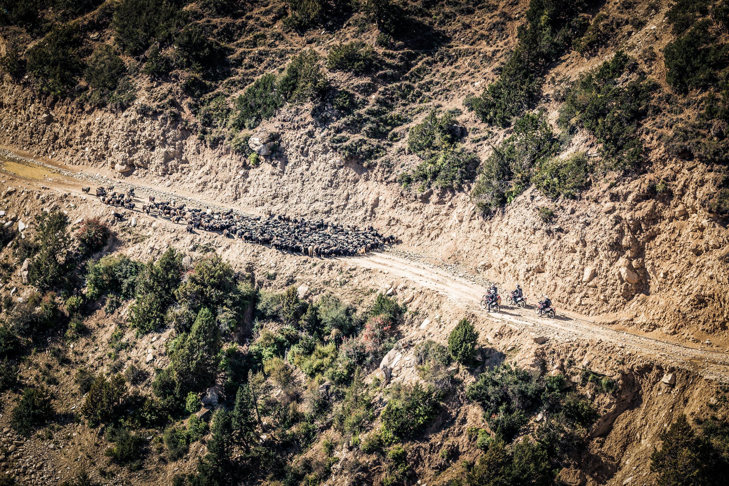 TWHMC-nepal-motorcycle-adventure-2016-0564-2-2.jpg