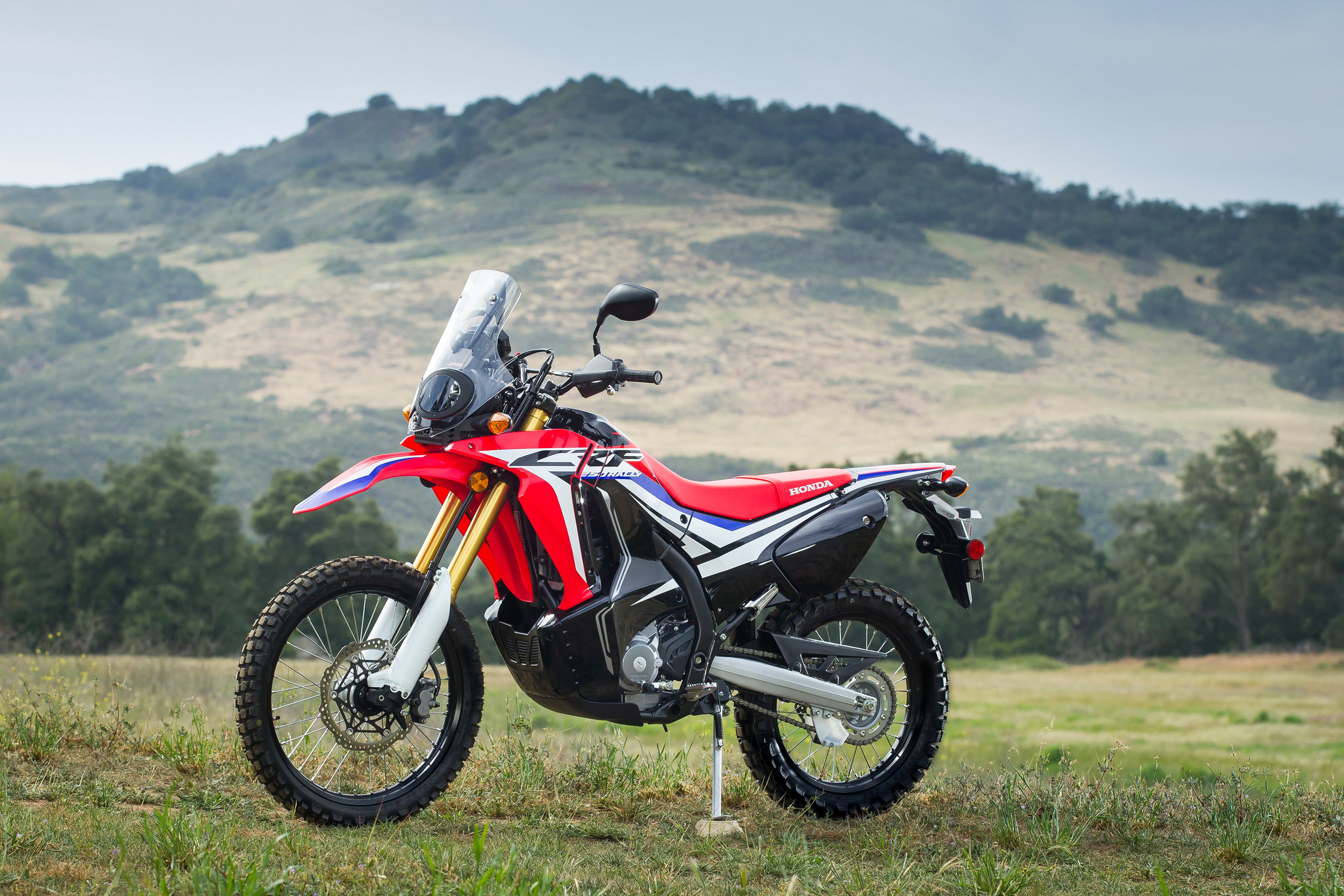 2017_Honda-CRF250Rally-39.jpg