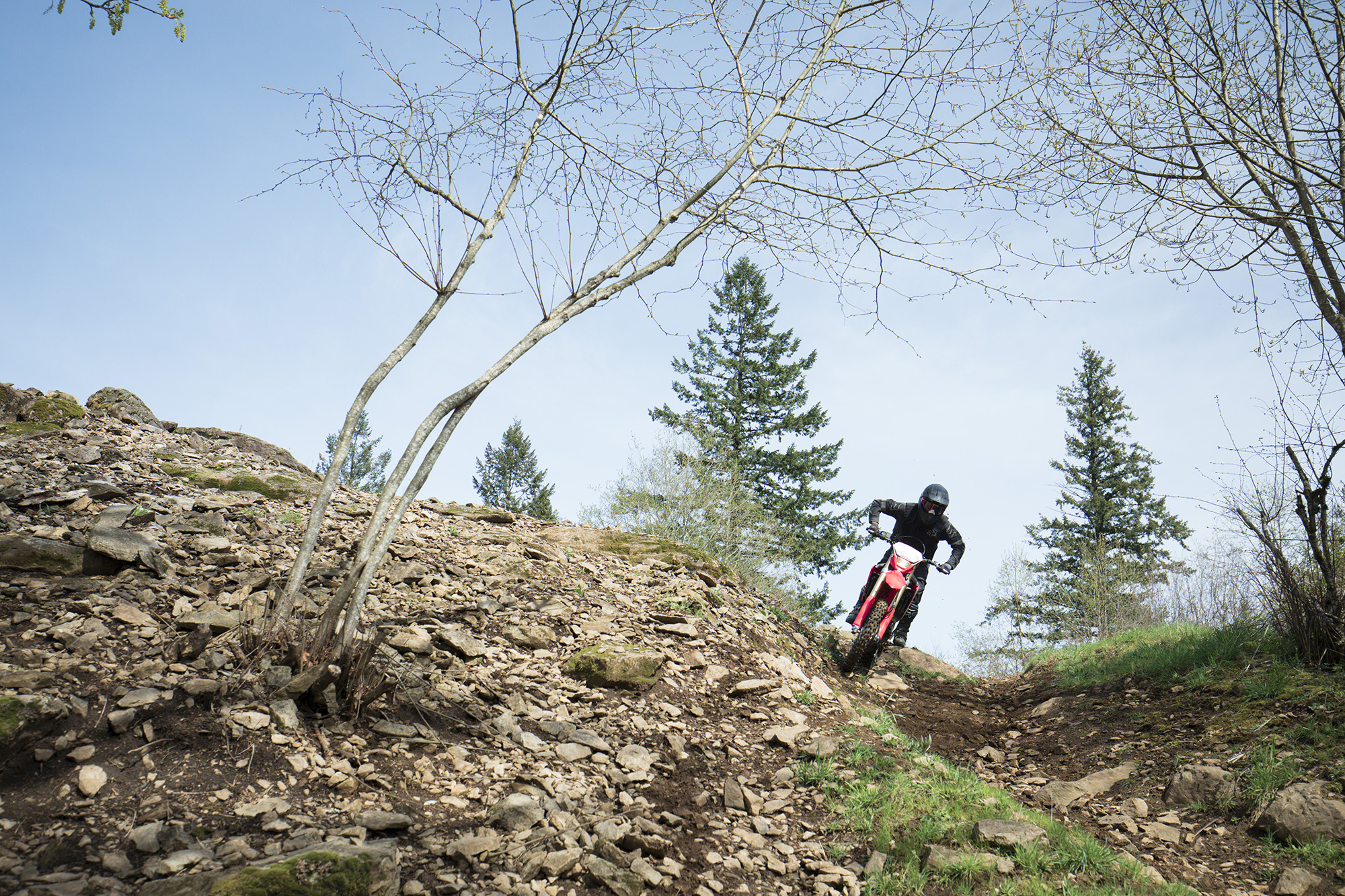 19 Honda CRF450X_Action_13.jpg